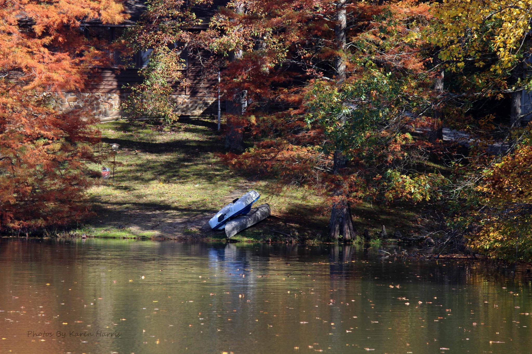 Autumn Kayaks by Karen Harris