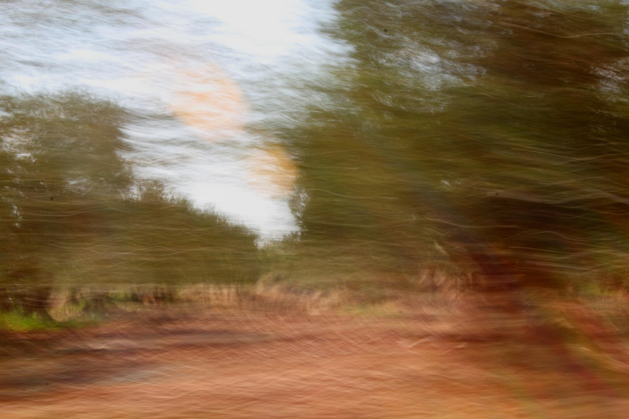 Photo in Abstract #nature #impressionism #movement #earth