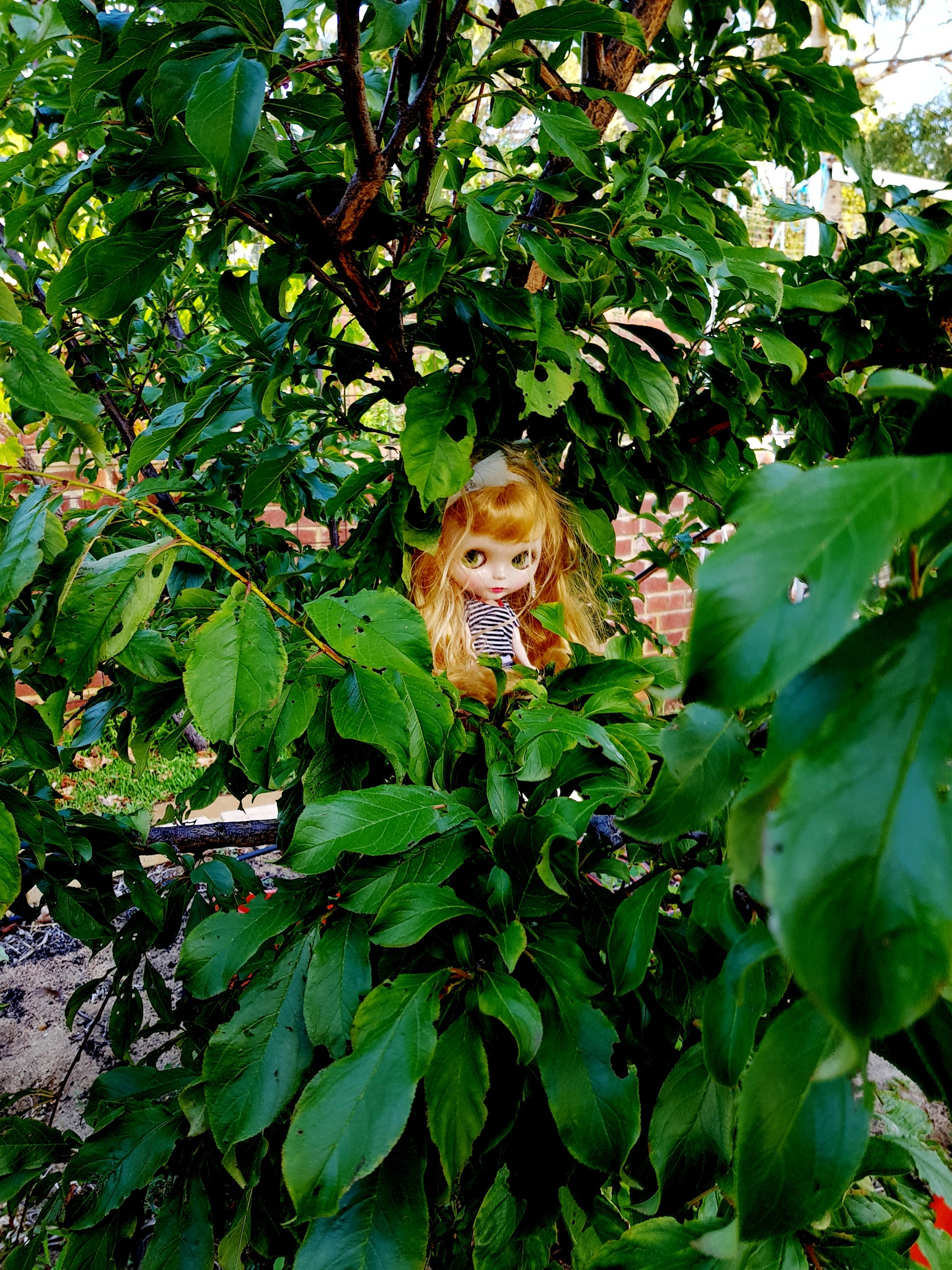 claire in the tree by TammyLouiseEatwell