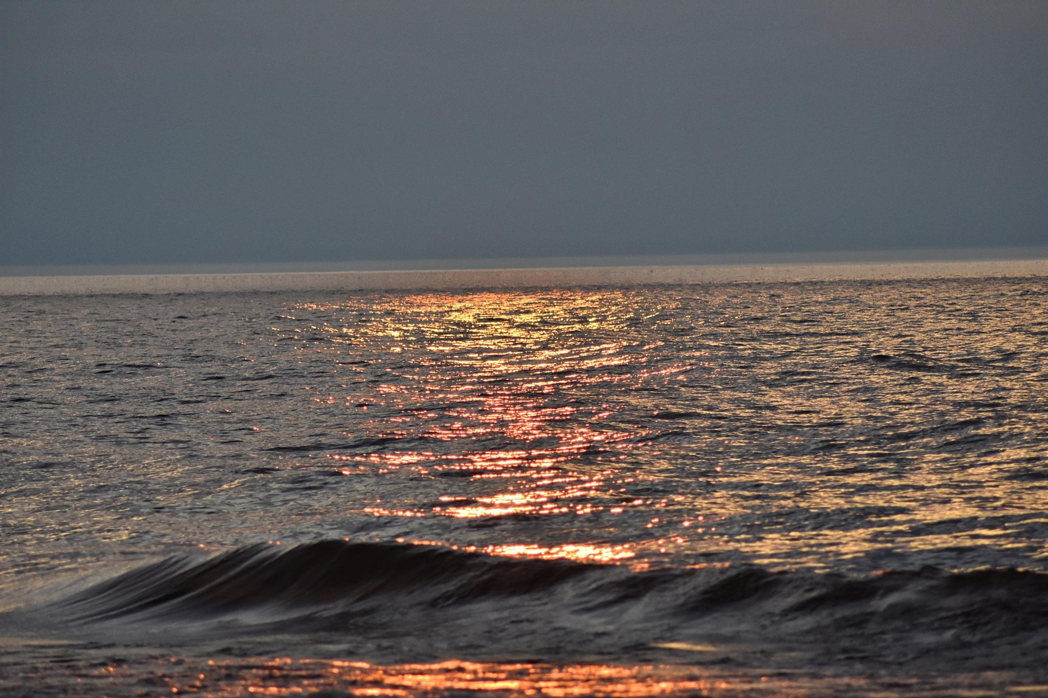 Daylight's Kiss Goodnight by Gena Koelker