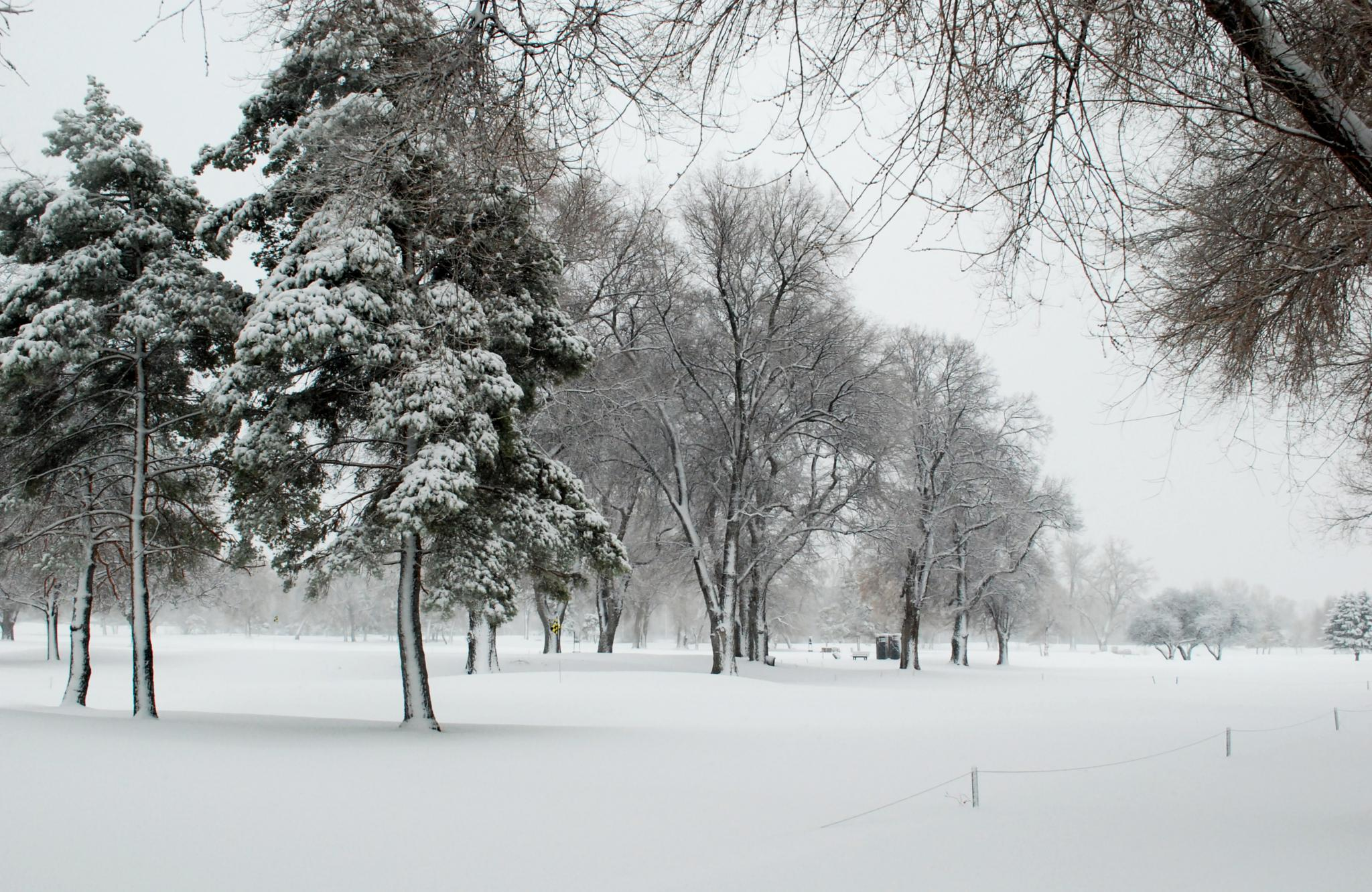 Snow at Nibley Park Golf course by Marco Gutierrez