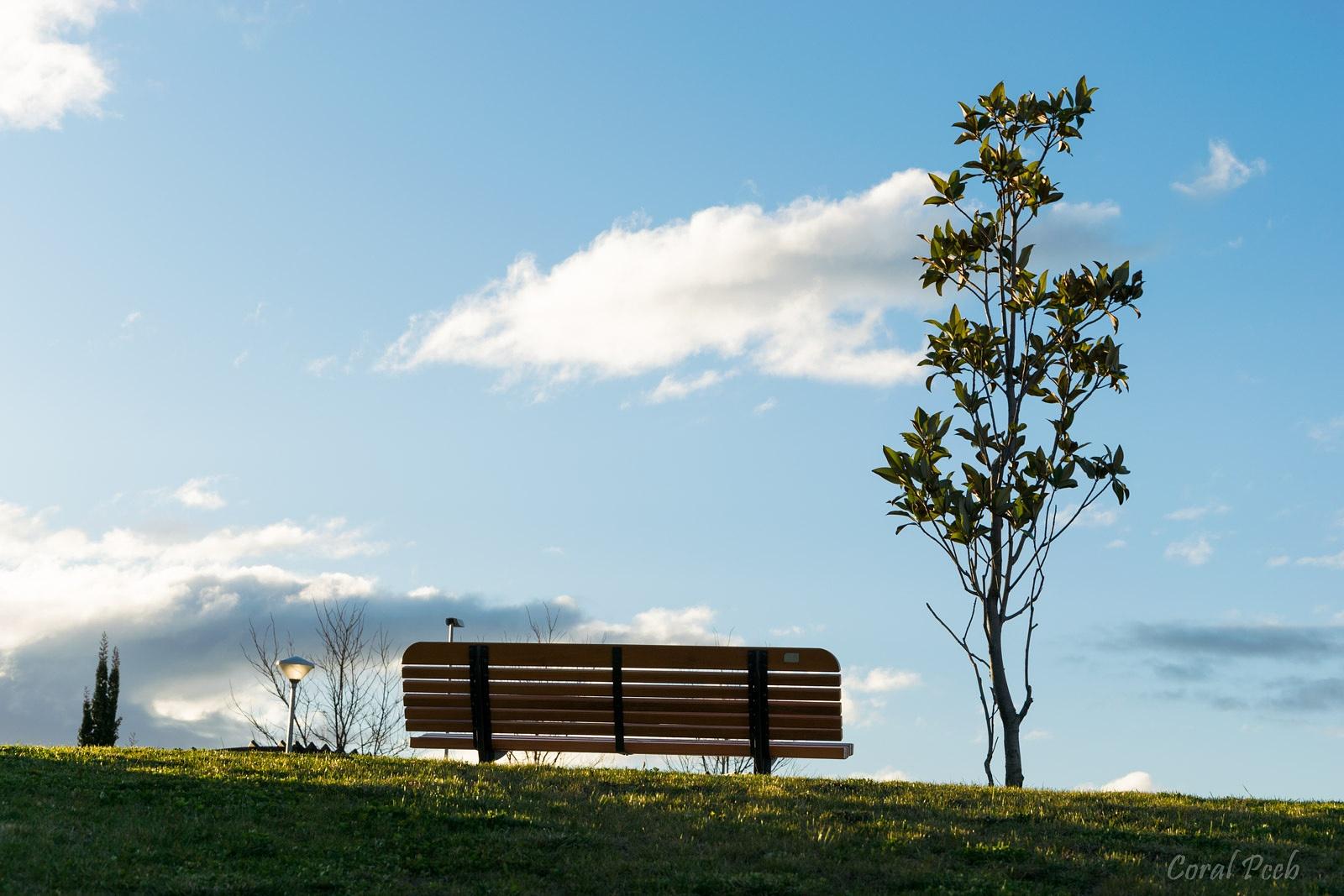 Park bench by CoralPceb