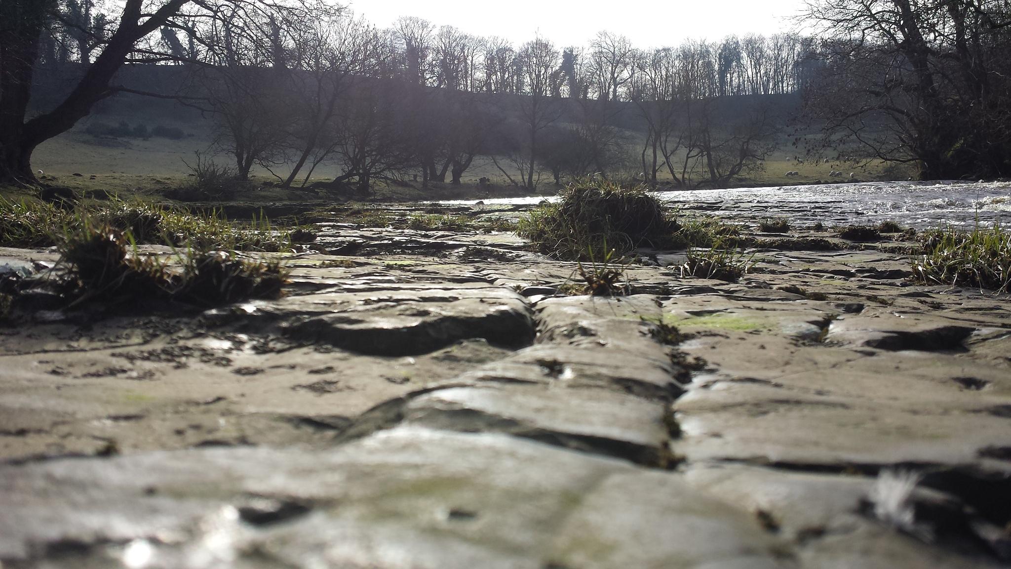 River walk  by brightredsquirrel