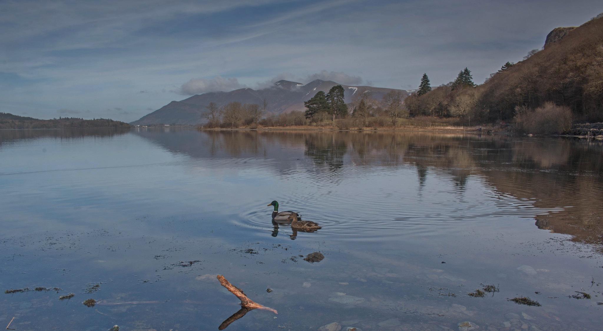 Derwent Water by Chris Wood