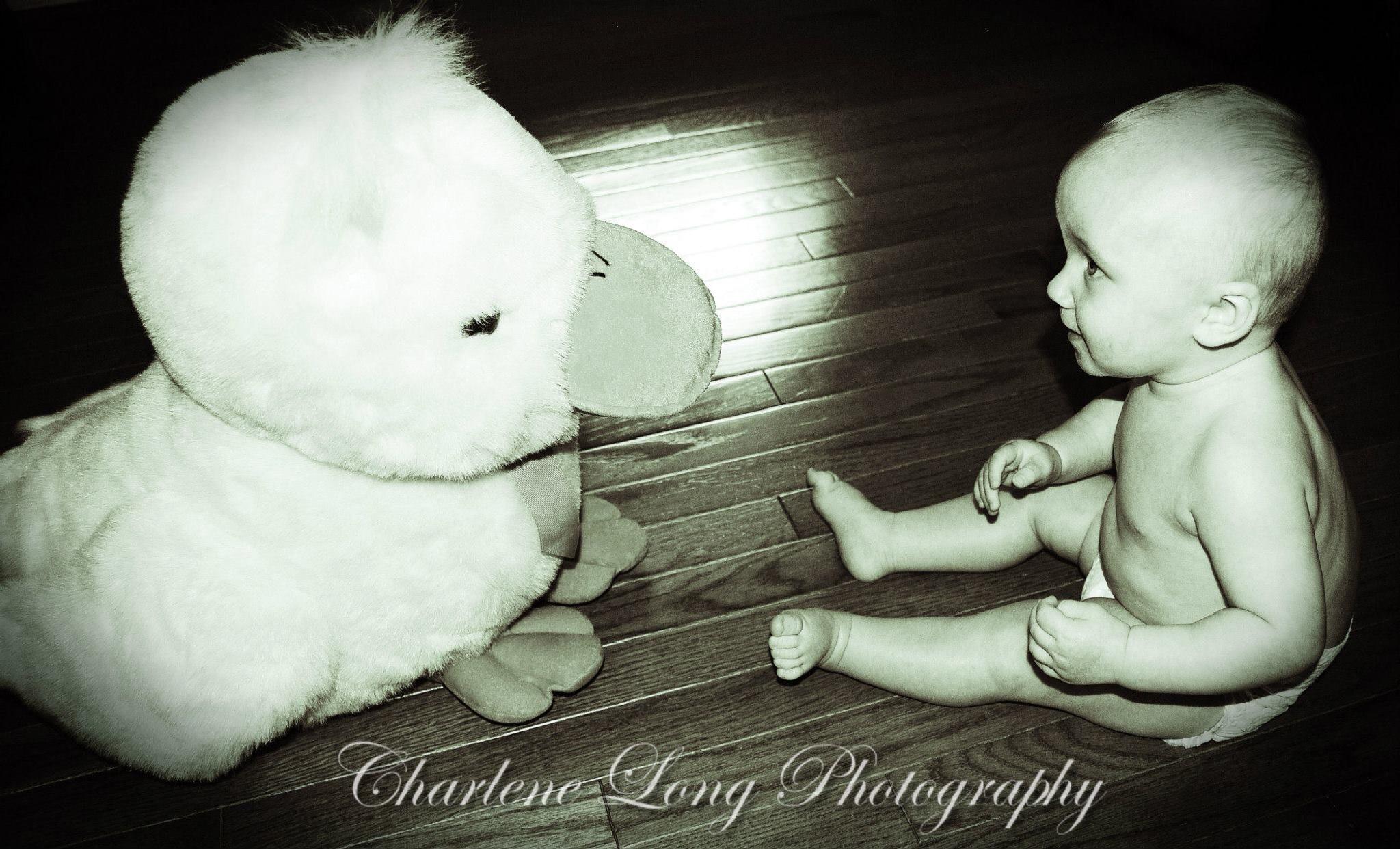 Duck by Charlene Long