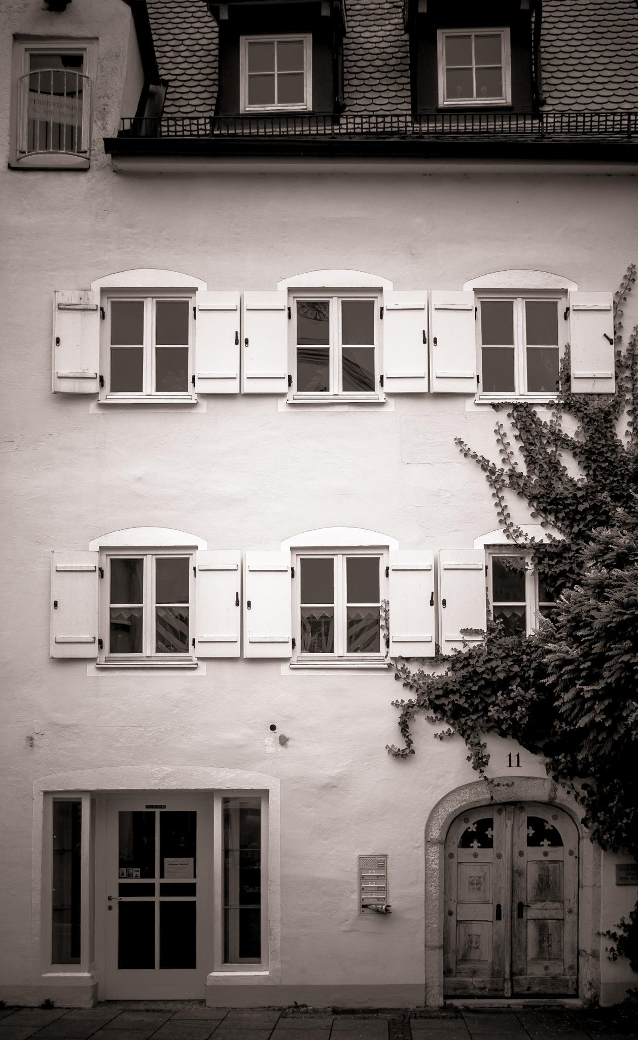 House  by Adina C.