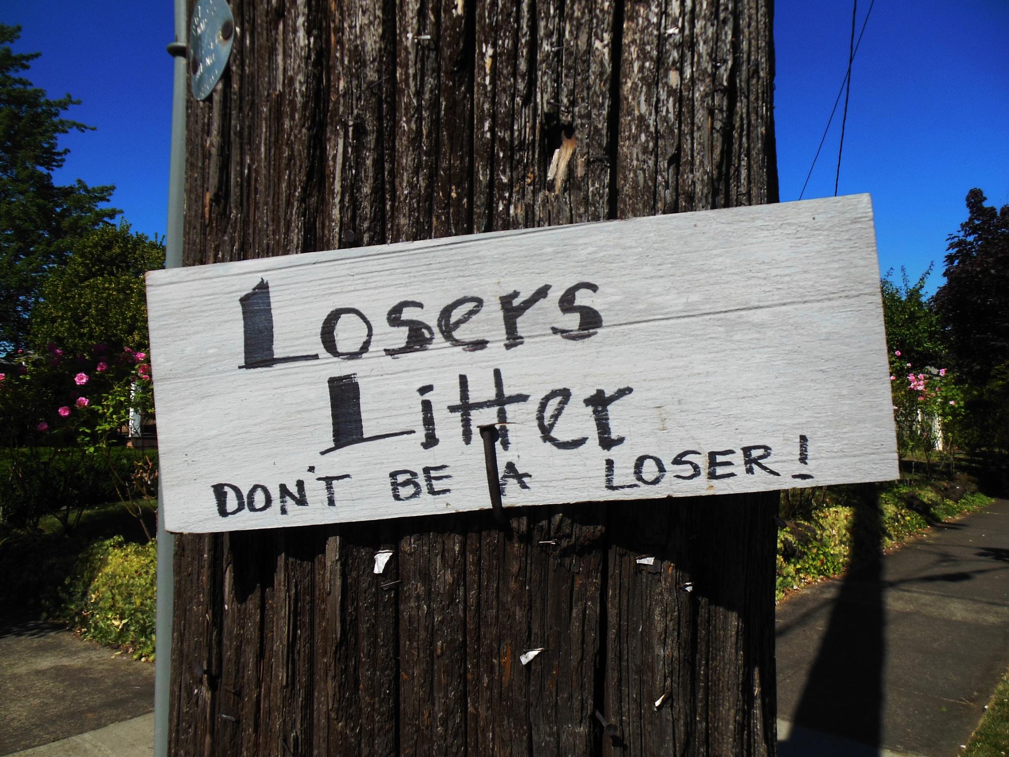 Don't Be A Loser by Des Jardins