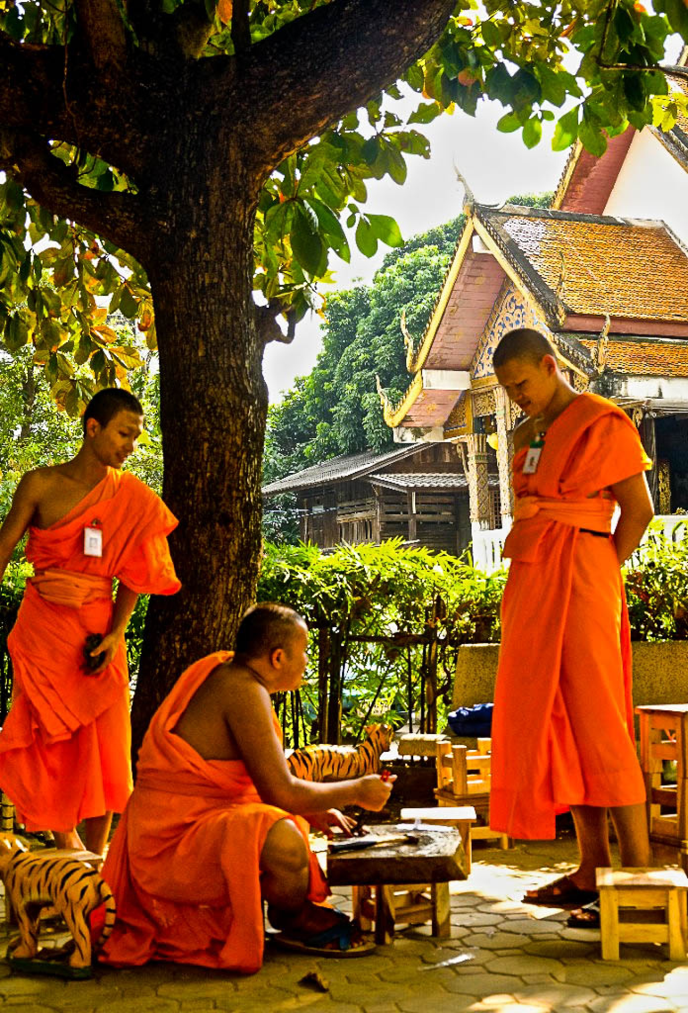 Monks at Work, Chiang Mai, Thailand by JohnMilligan