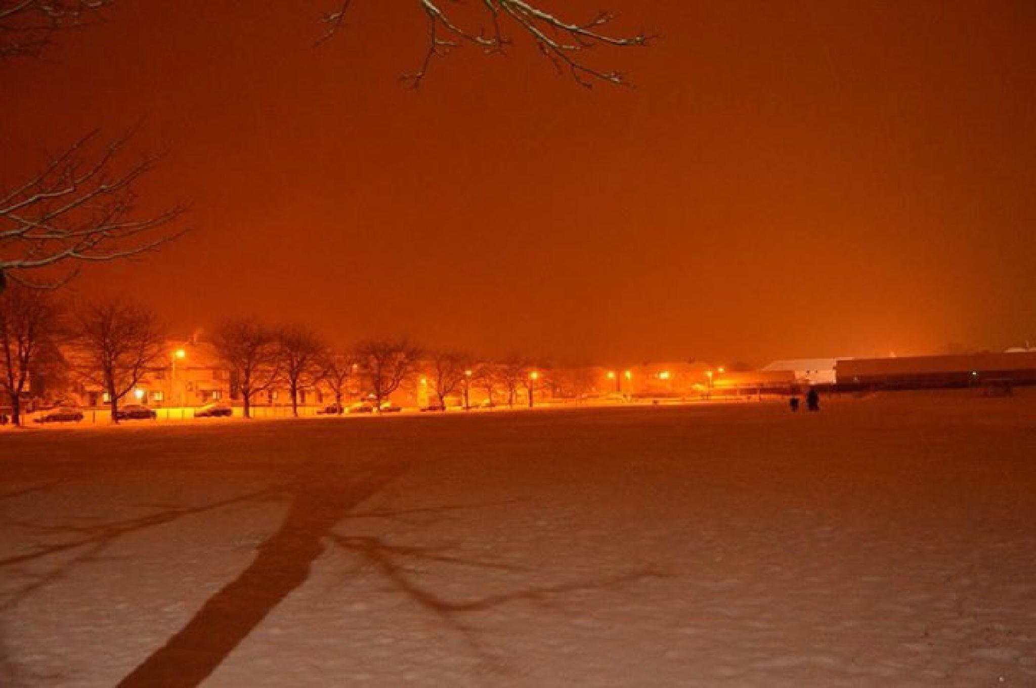 Snowy park   by Jody Choma