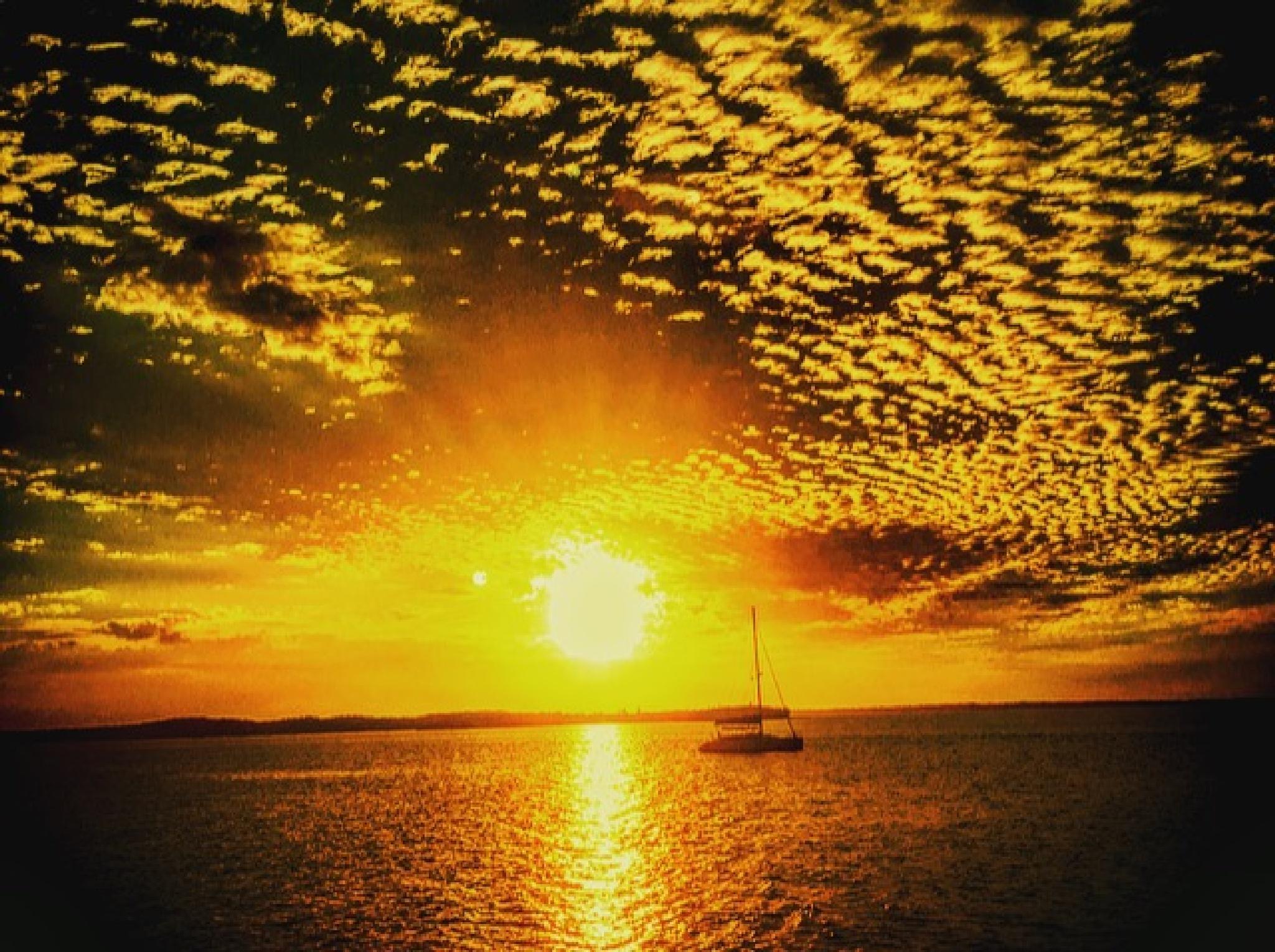 Sunset Sail by Stevie Lynn