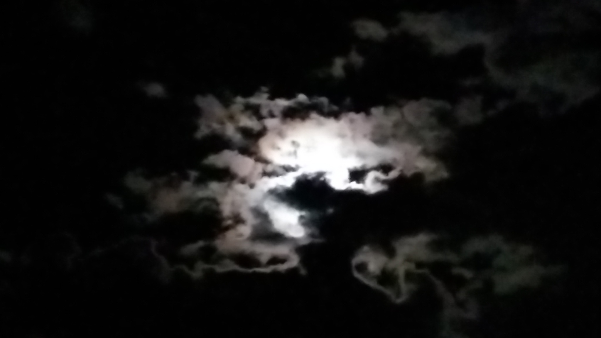 night vision by Rankat