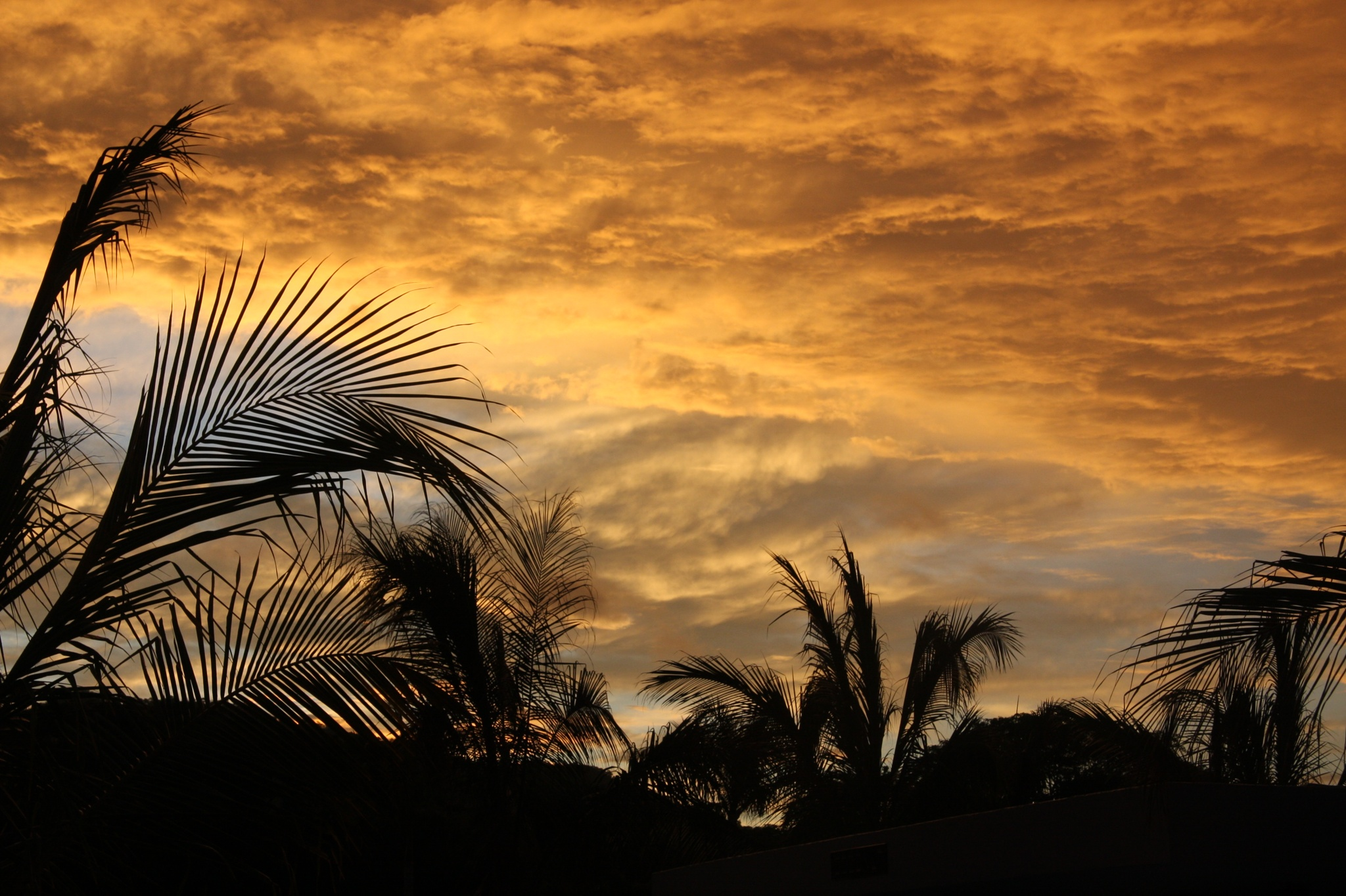 Costa Rica Sunset by Roger Sims