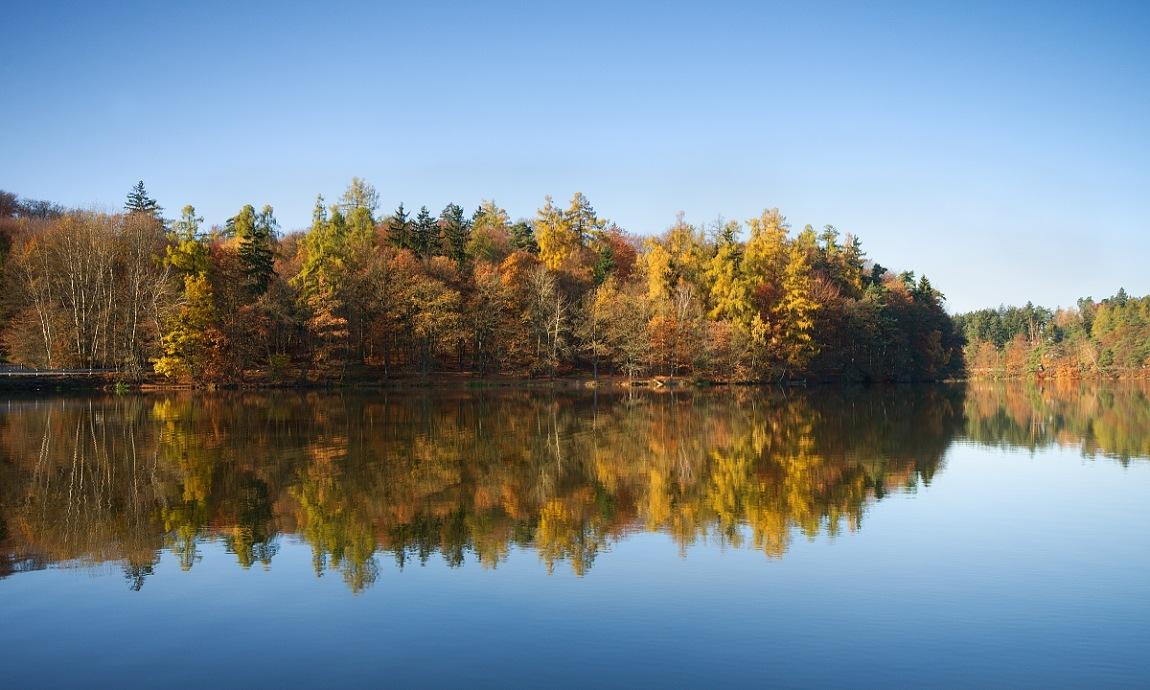 Autumn by Thum