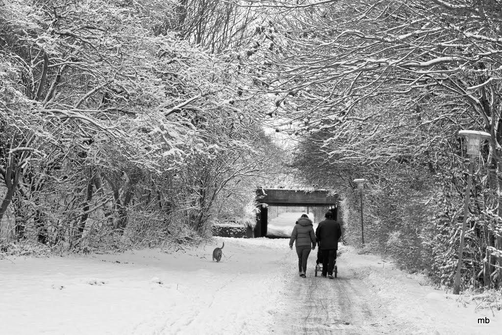 Winter in Denmark by magnusbjorns