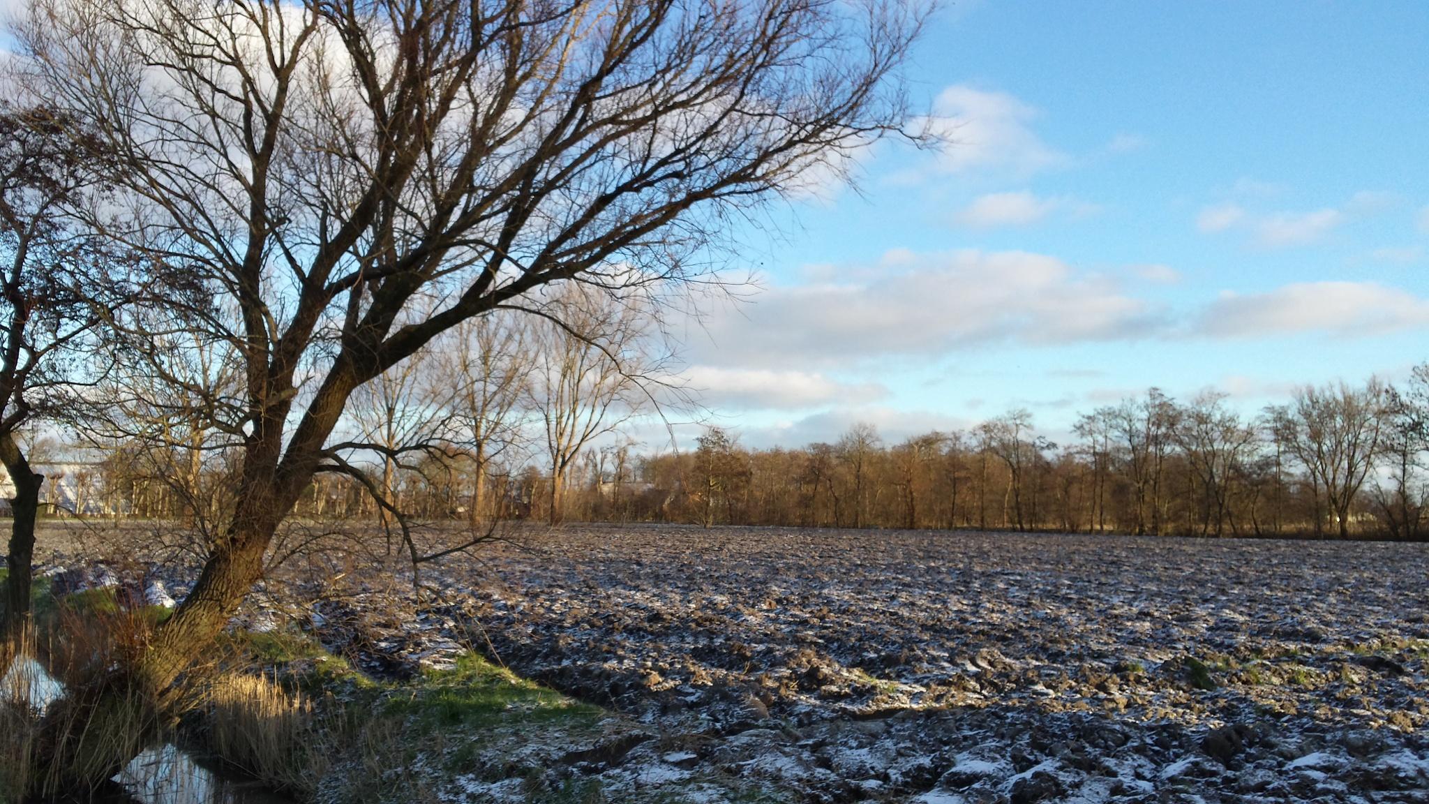 Geploegd en besneeuwd akkerland by Henri Tiezema