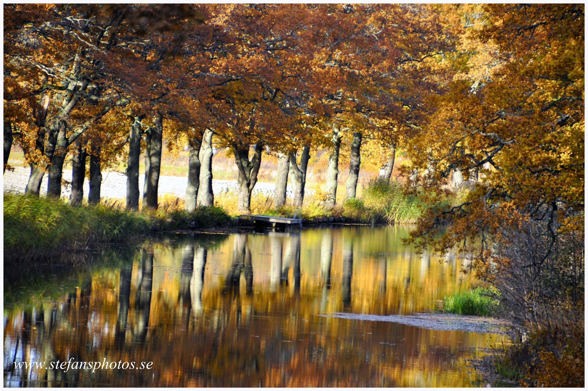 Autumn at The canal by stefan pettersson