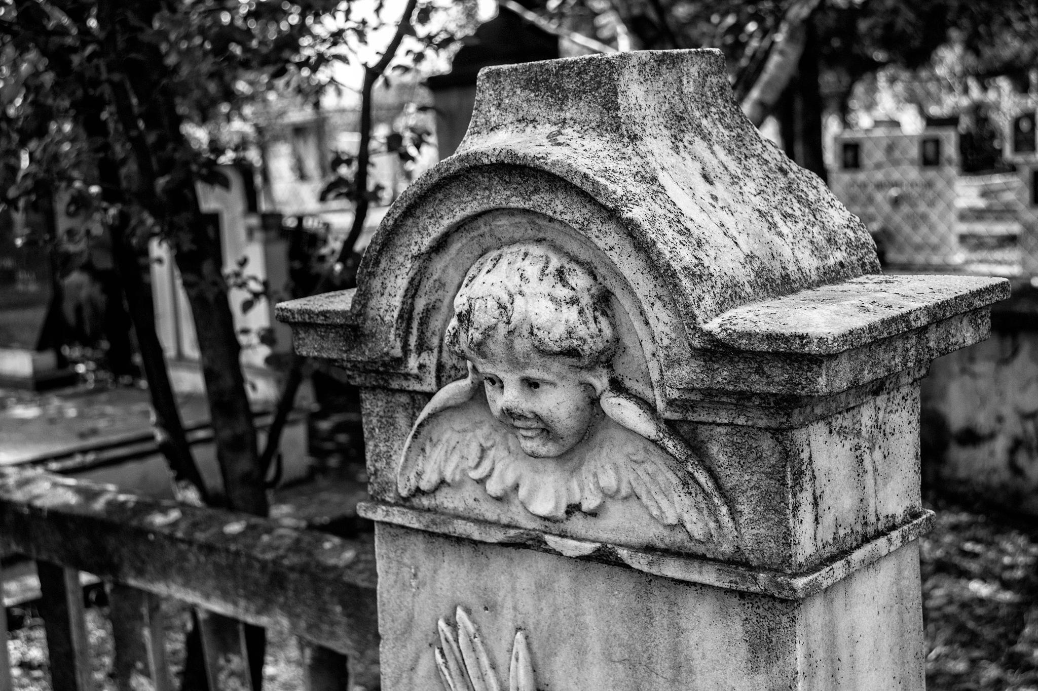 Angel by Goran Dimov