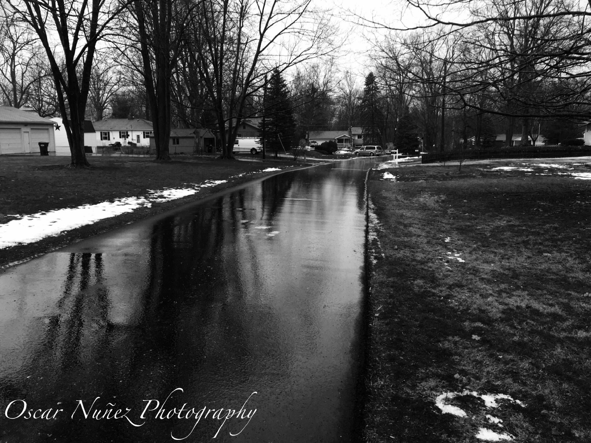 Rainy Days! by Oscar Nuñez