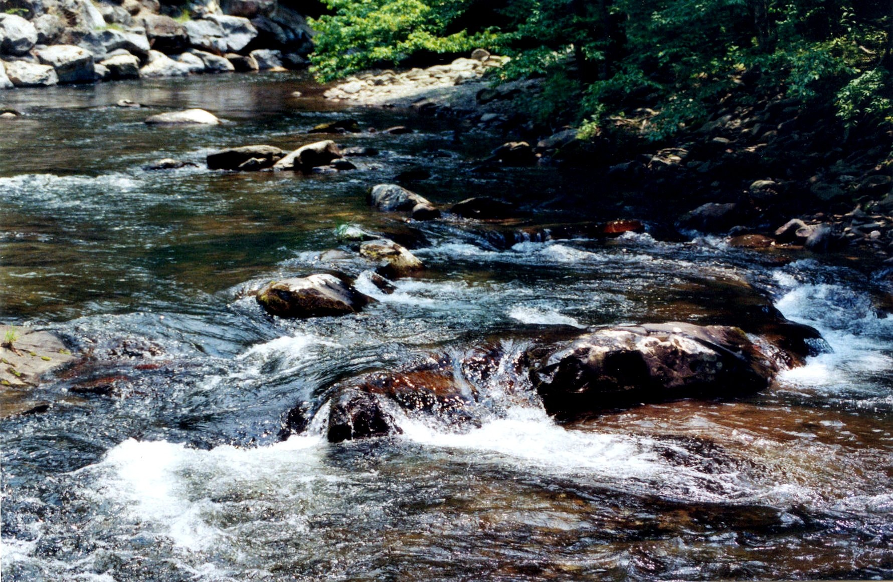 Flowing Water by Thomas Bouldin