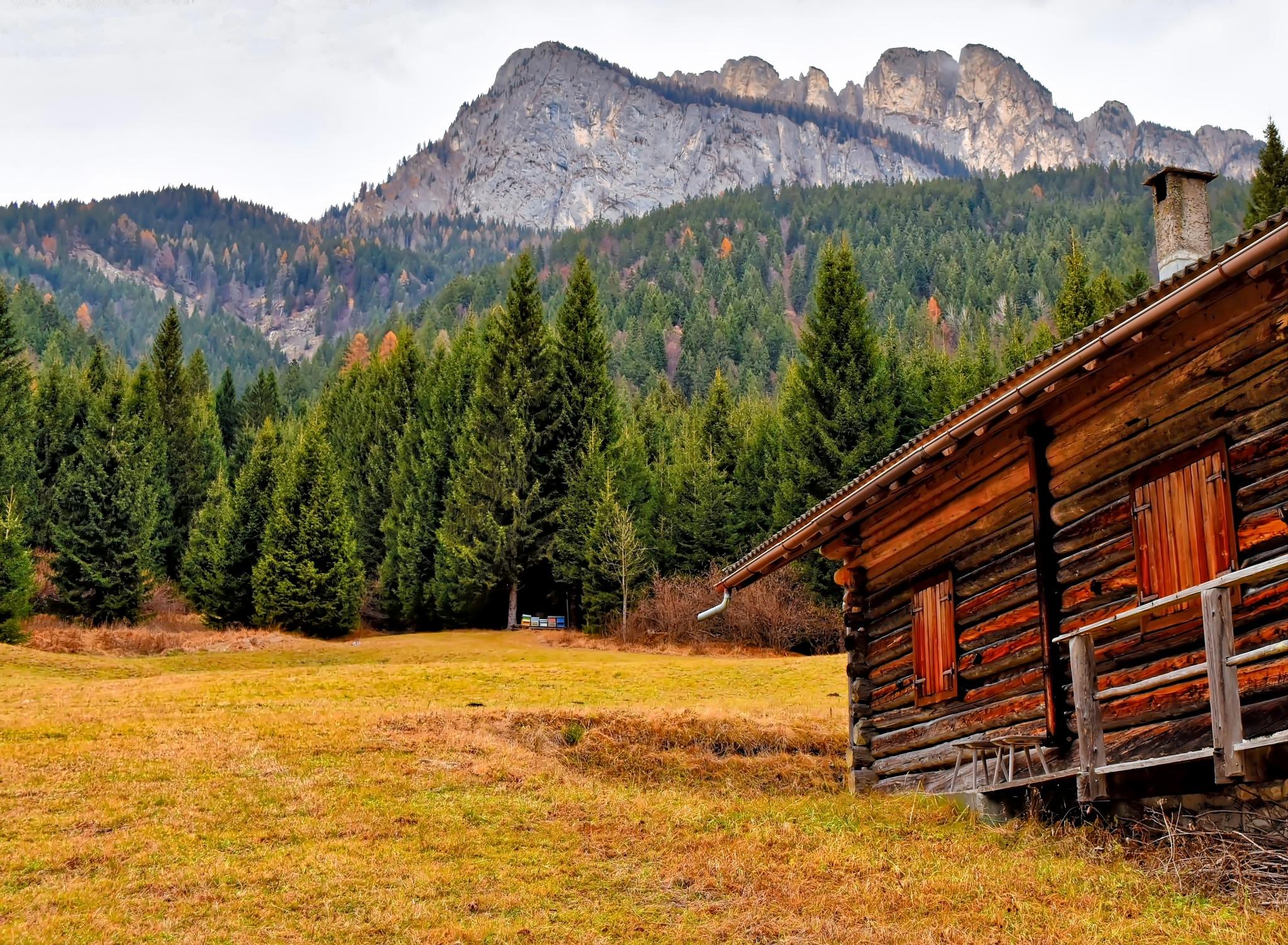 Mountain Cabin by Mirto