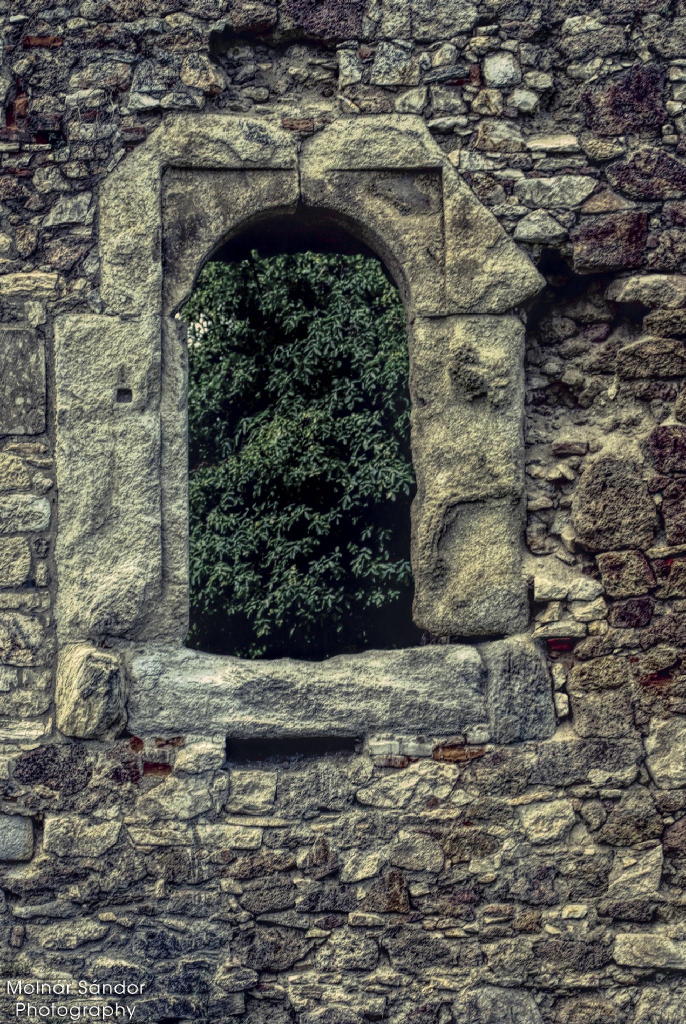 Window .... by Alexander Molnár