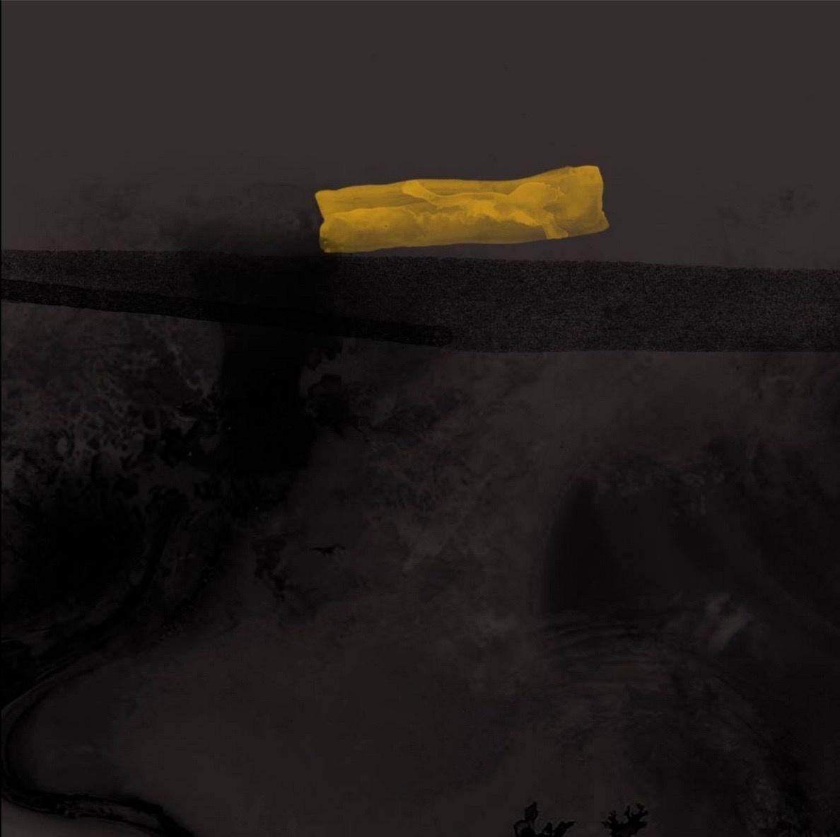 chasing yellow by Alan Spazzali