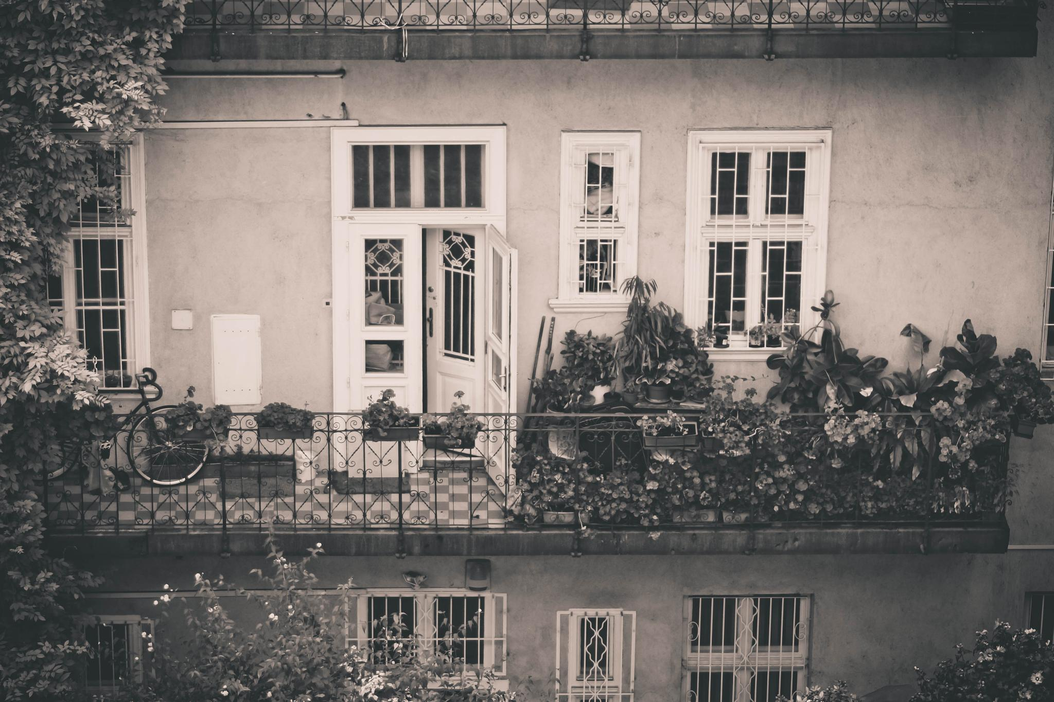 Photo in Black and White #balcony #budapest #hungary #bike #blackandwhite #window #flowers #street