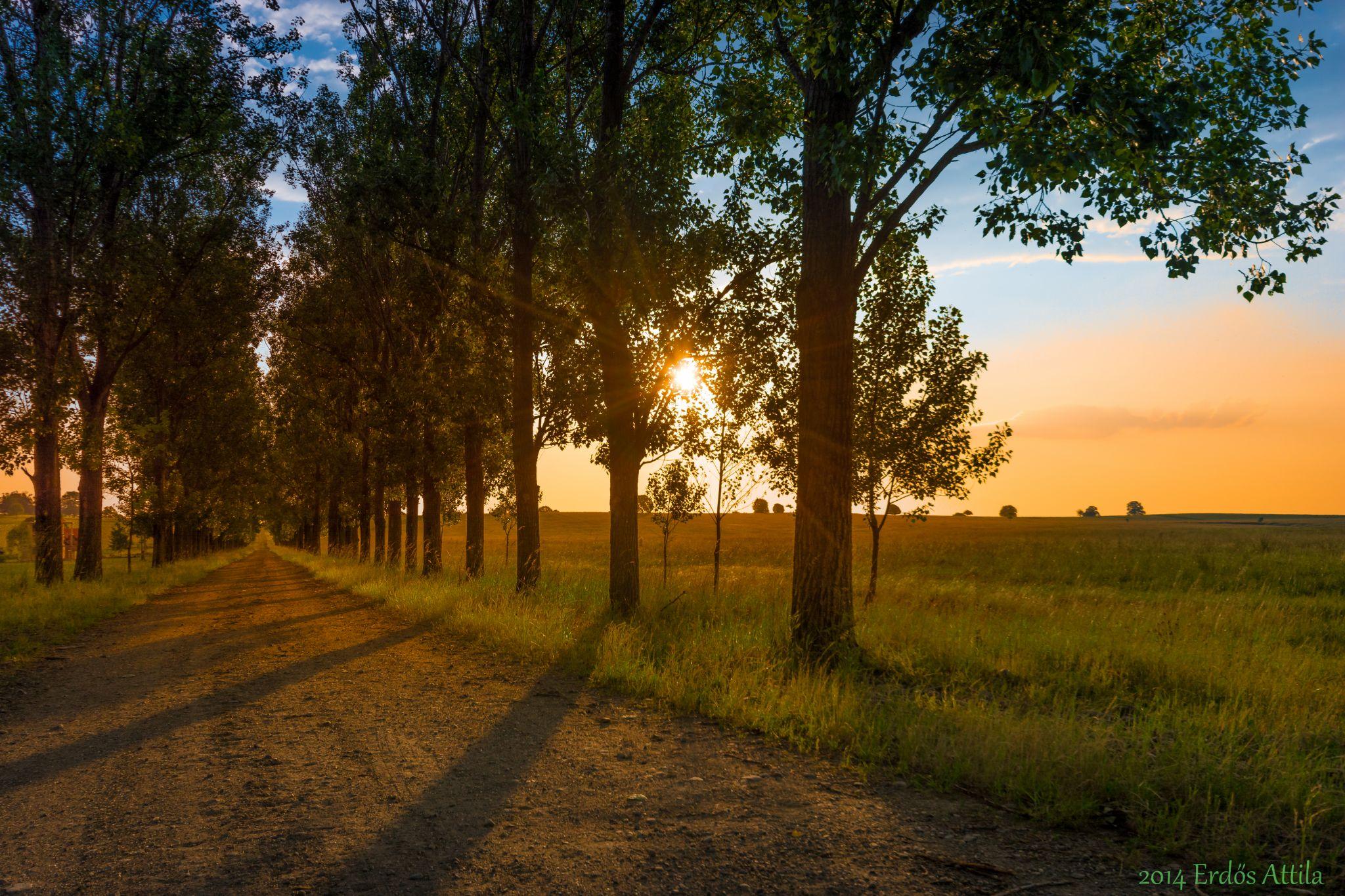 Long Way to Go by rdsattila