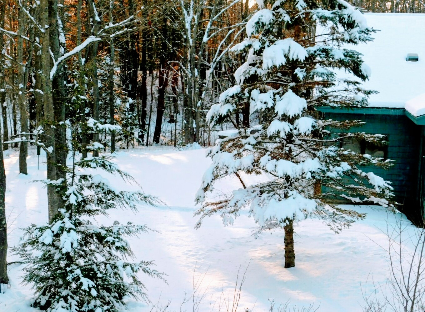 Sun Sets Upon the Snow by Stacey J. Cunningham