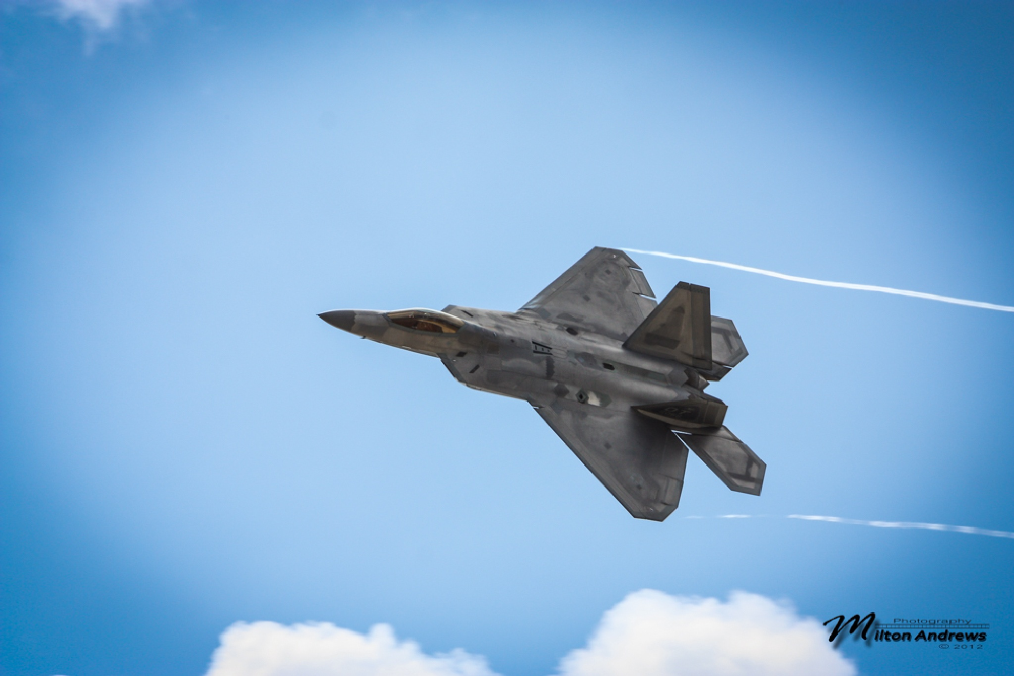 F-22 Fighter by Milton Andrews
