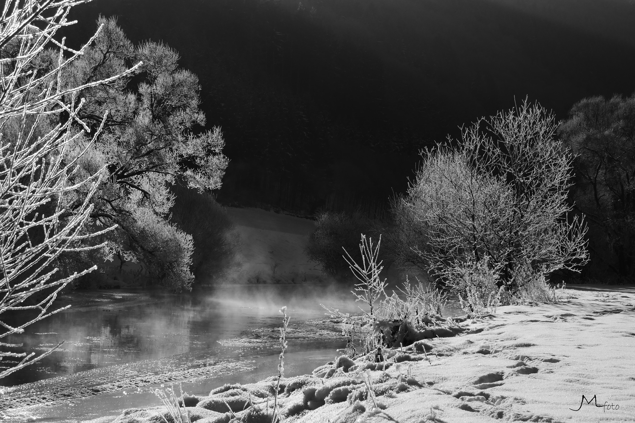 Winter in B&W 3 by JMLart