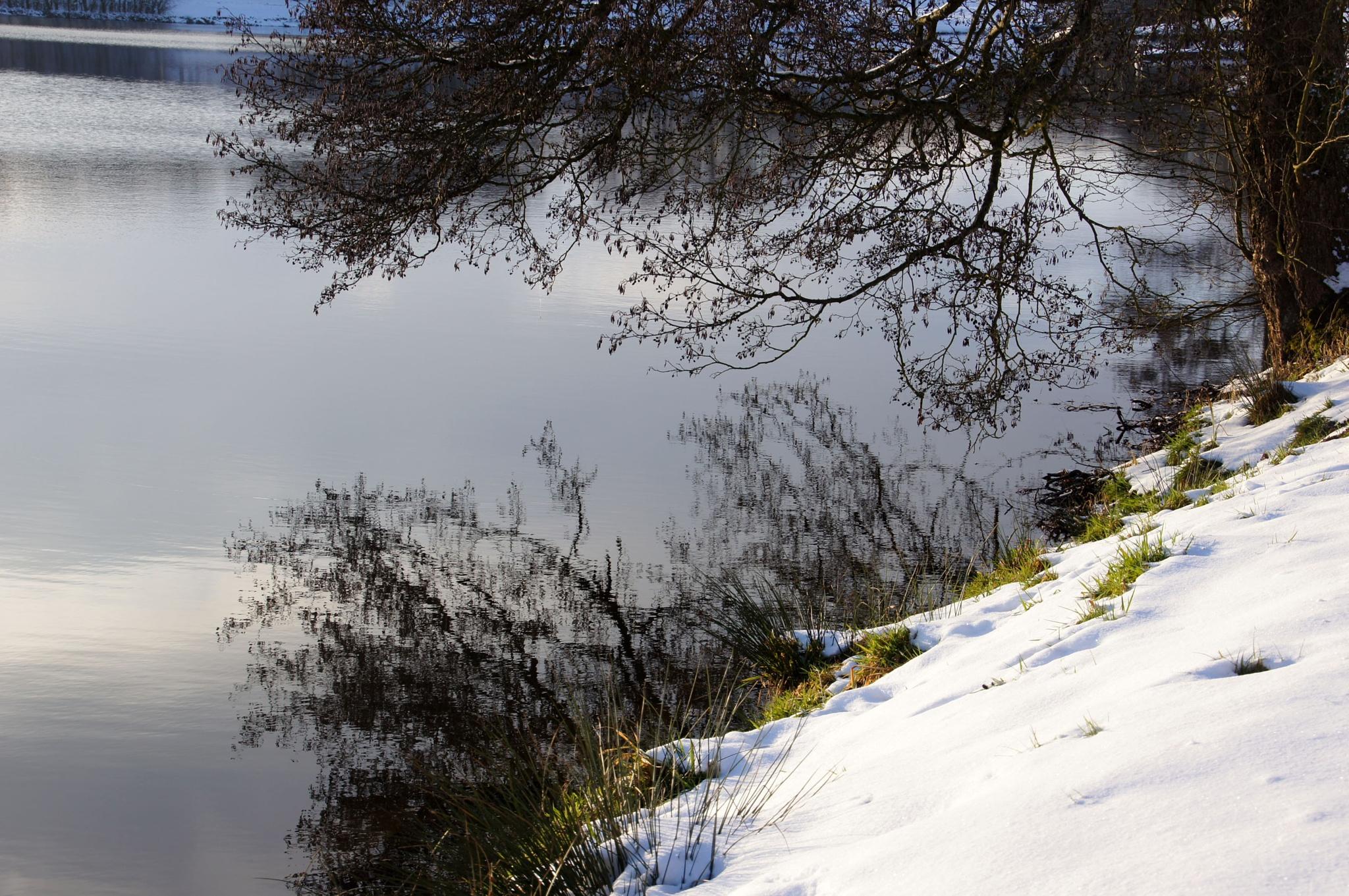 Winter Lake by JMLart