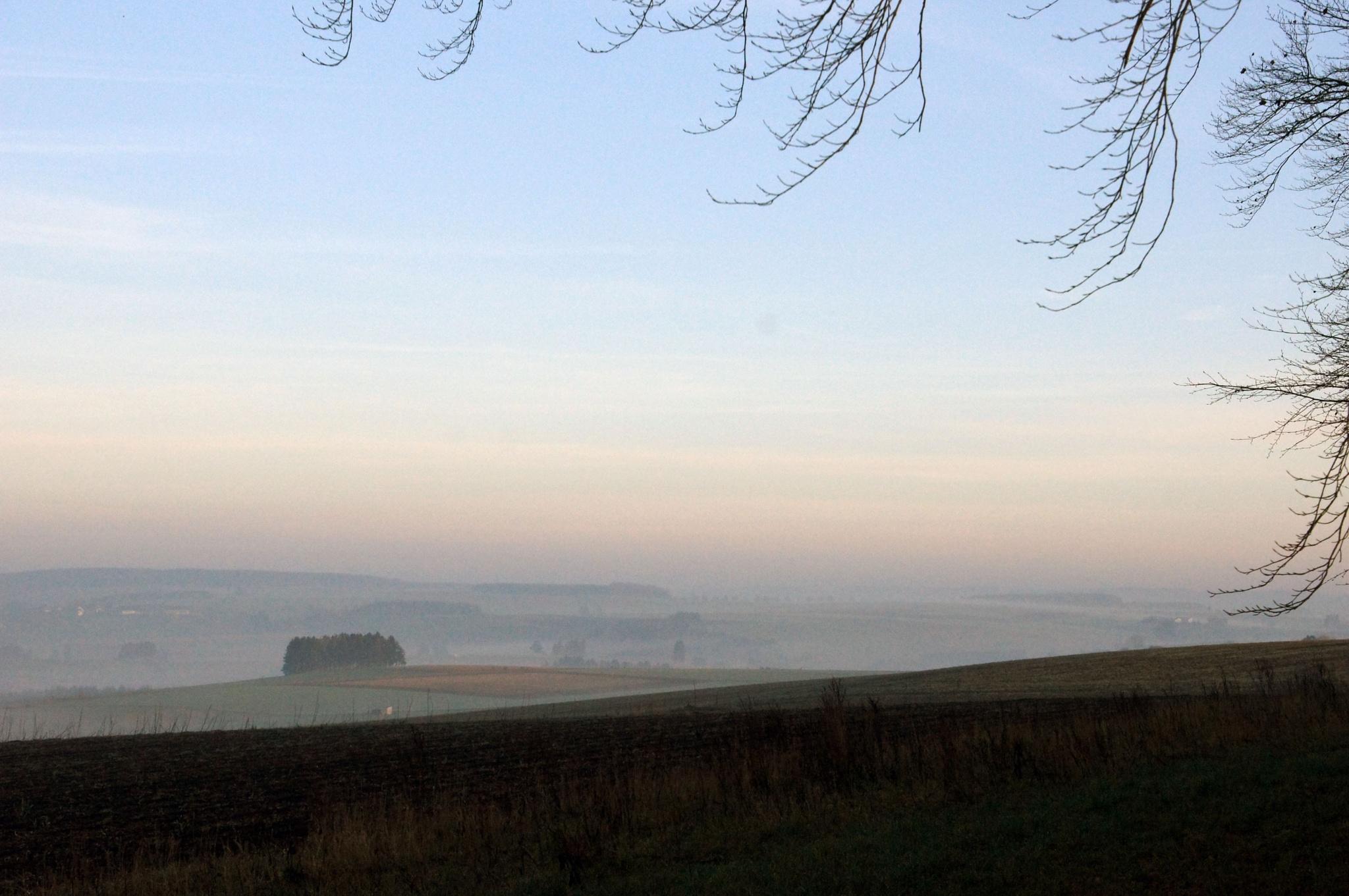 Misty morning by JMLart