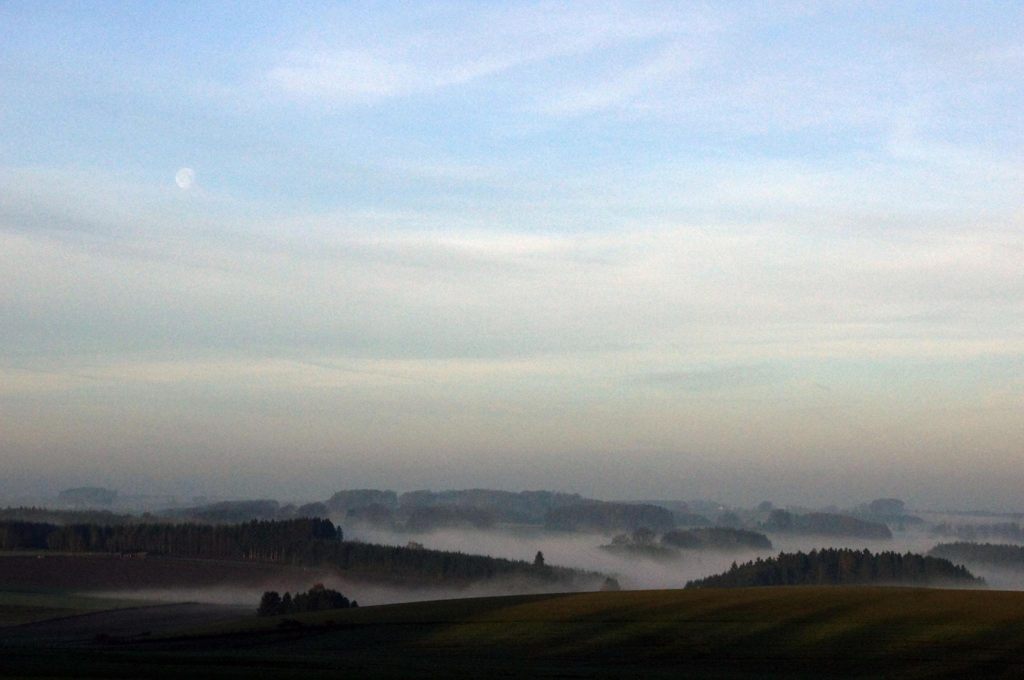 Misty morning 2 by JMLart