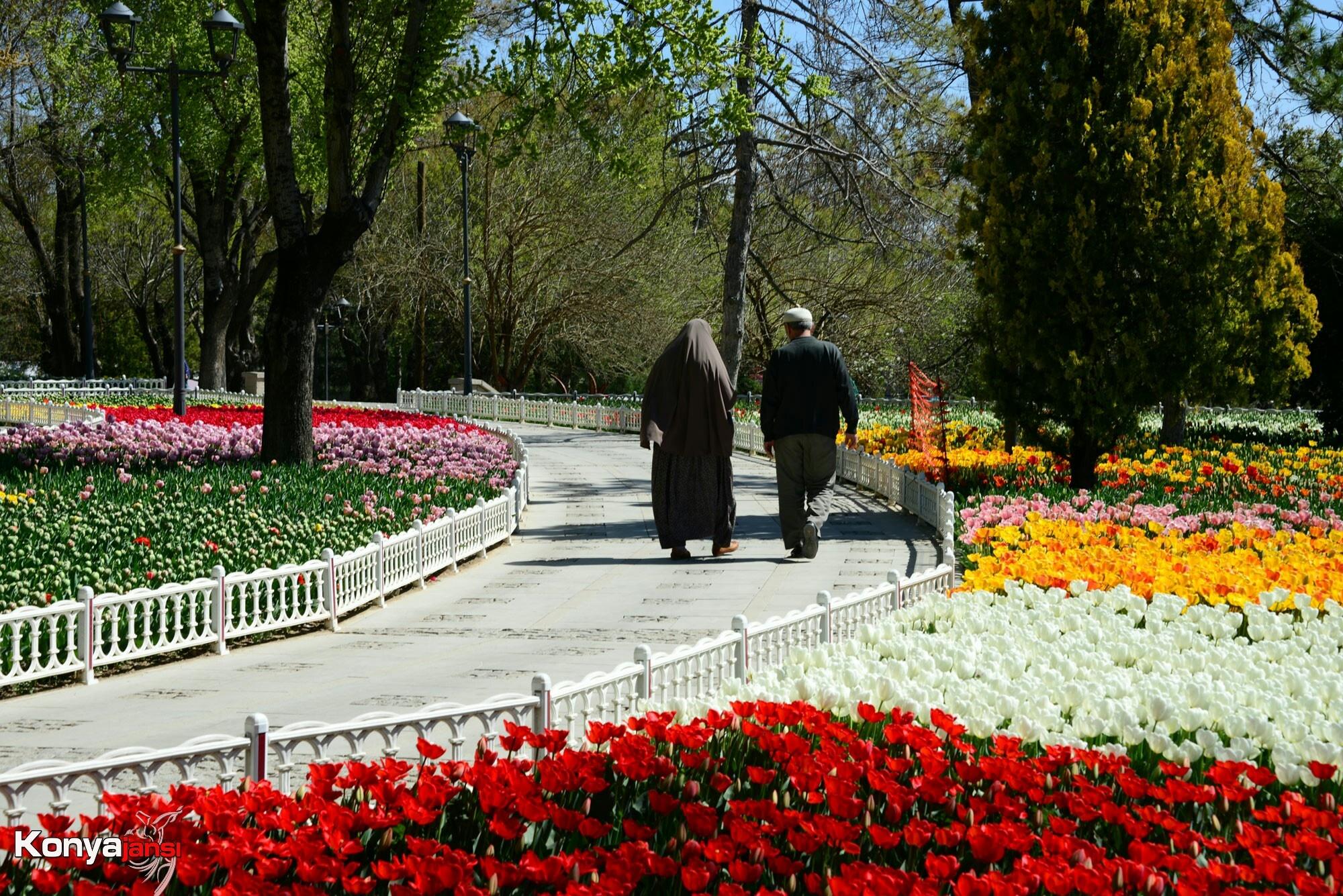 Konya Alâaddin tepesinde Lalezar  by konyaajansi