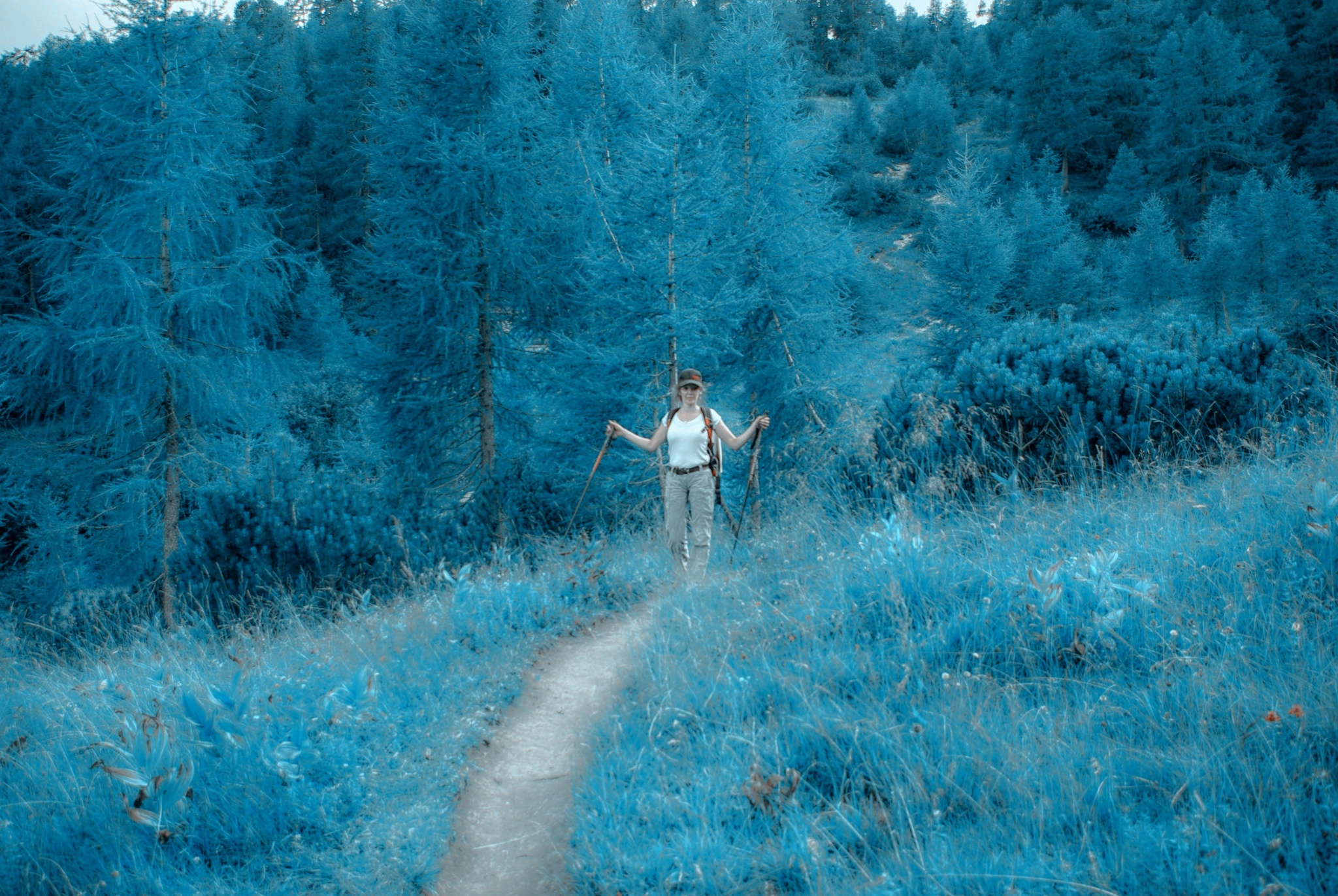 Alice in wonderland by Maja Stein