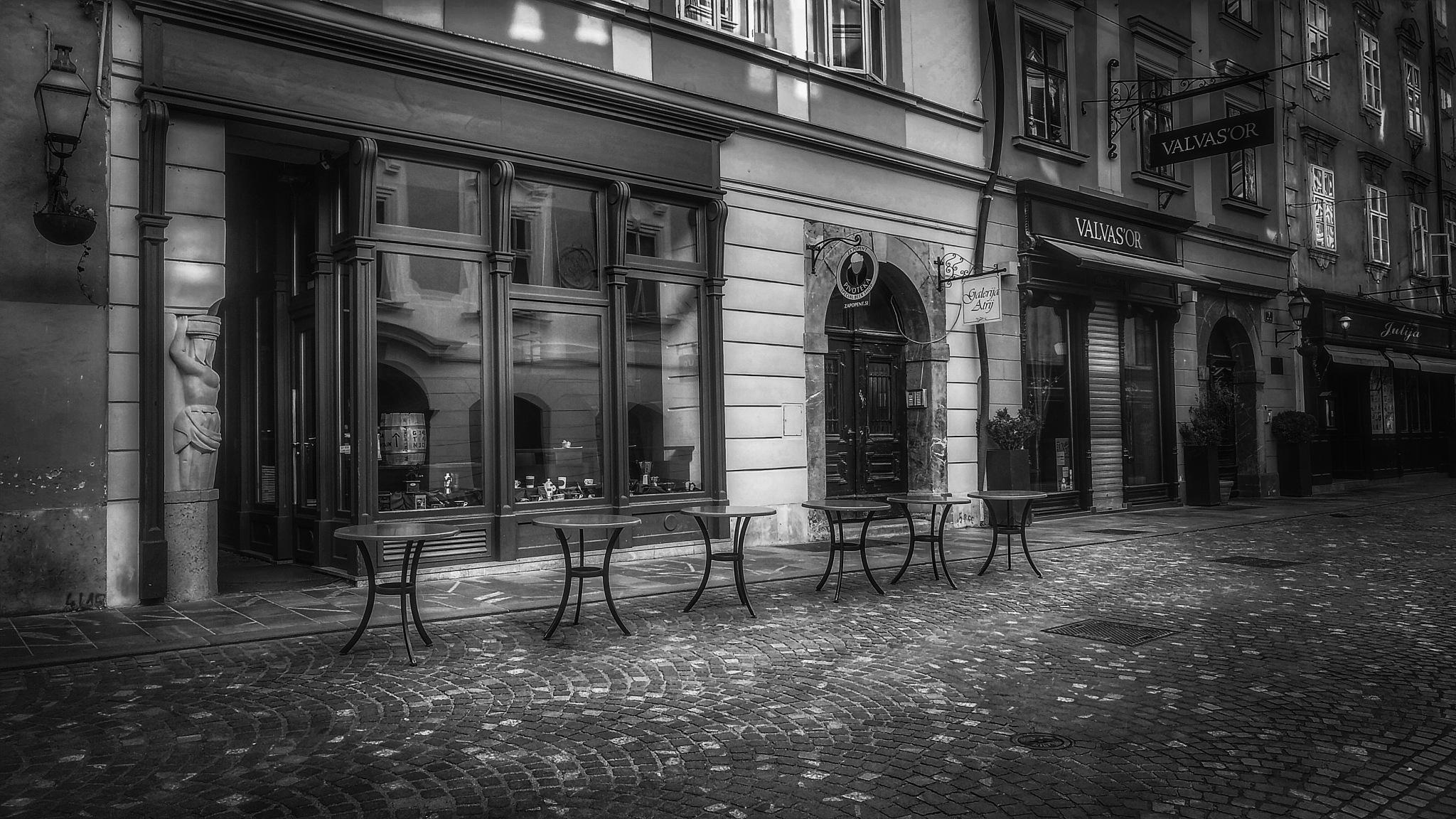 6 by Maja Stein