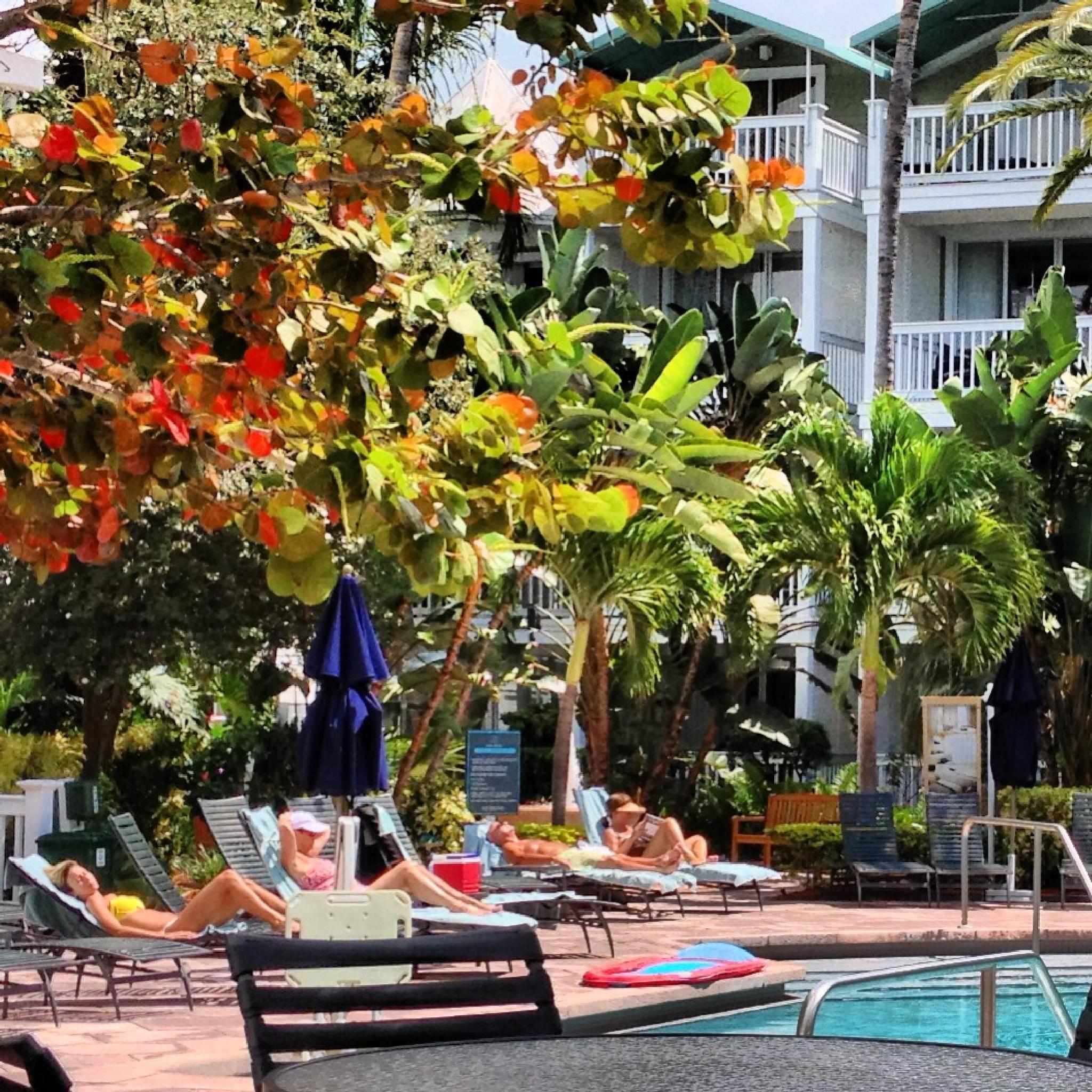 Poolside by Ed Fayette
