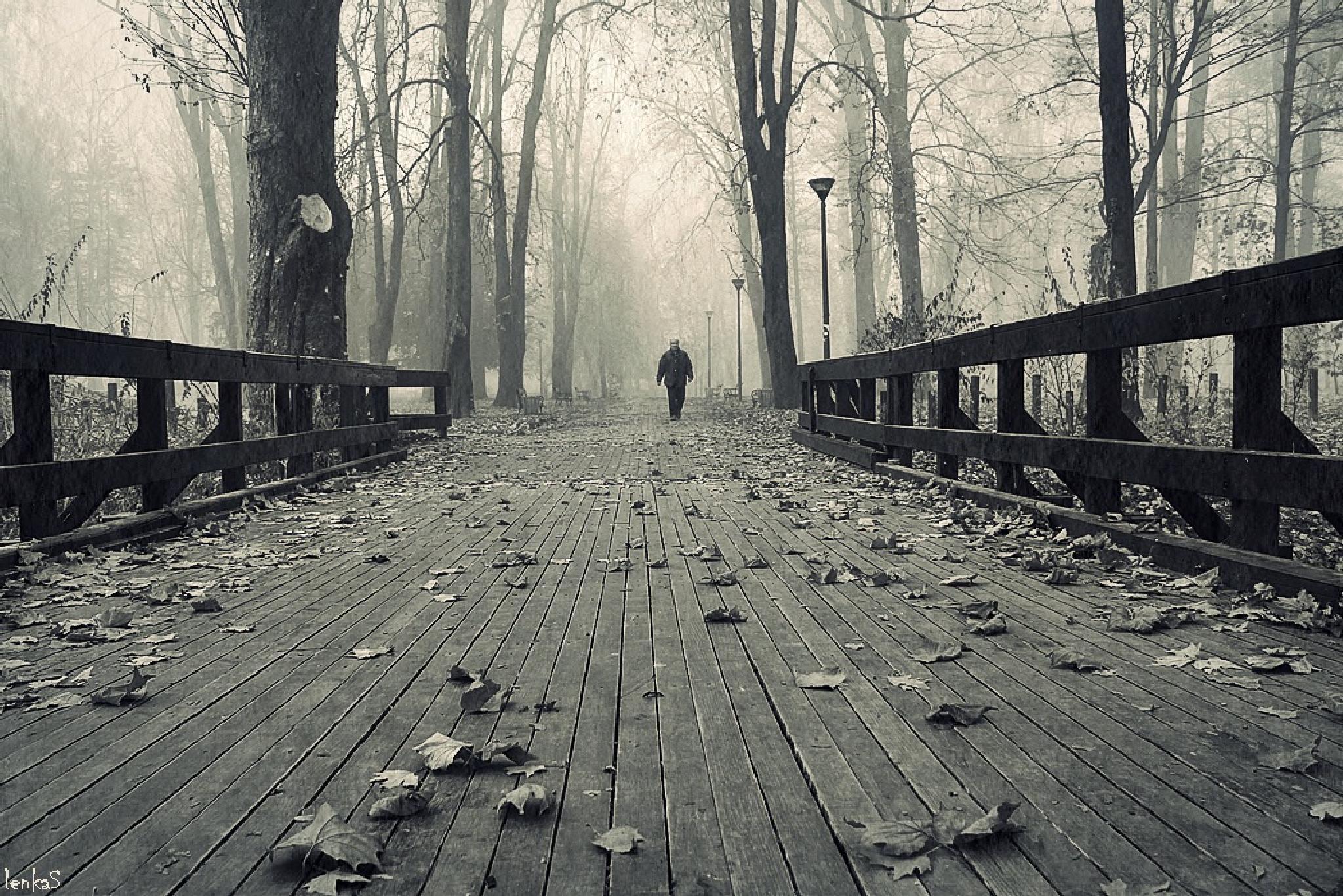 reader of loneliness by lenka samardzic