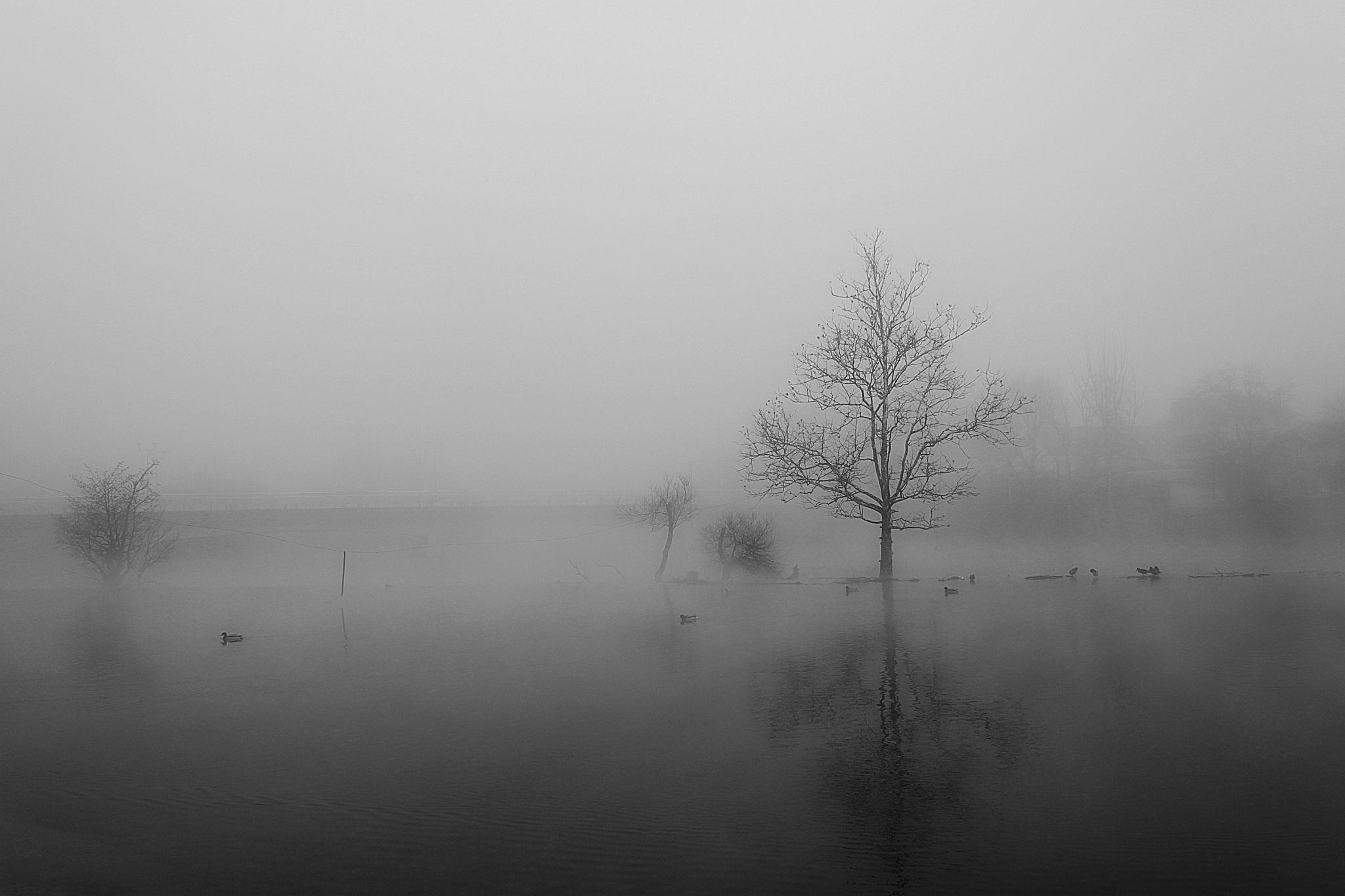 river blues by lenka samardzic