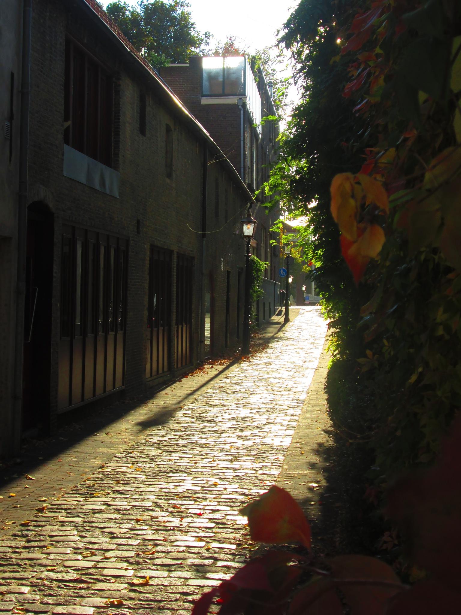 Sunrise on Schiedam, Holland by Facts60