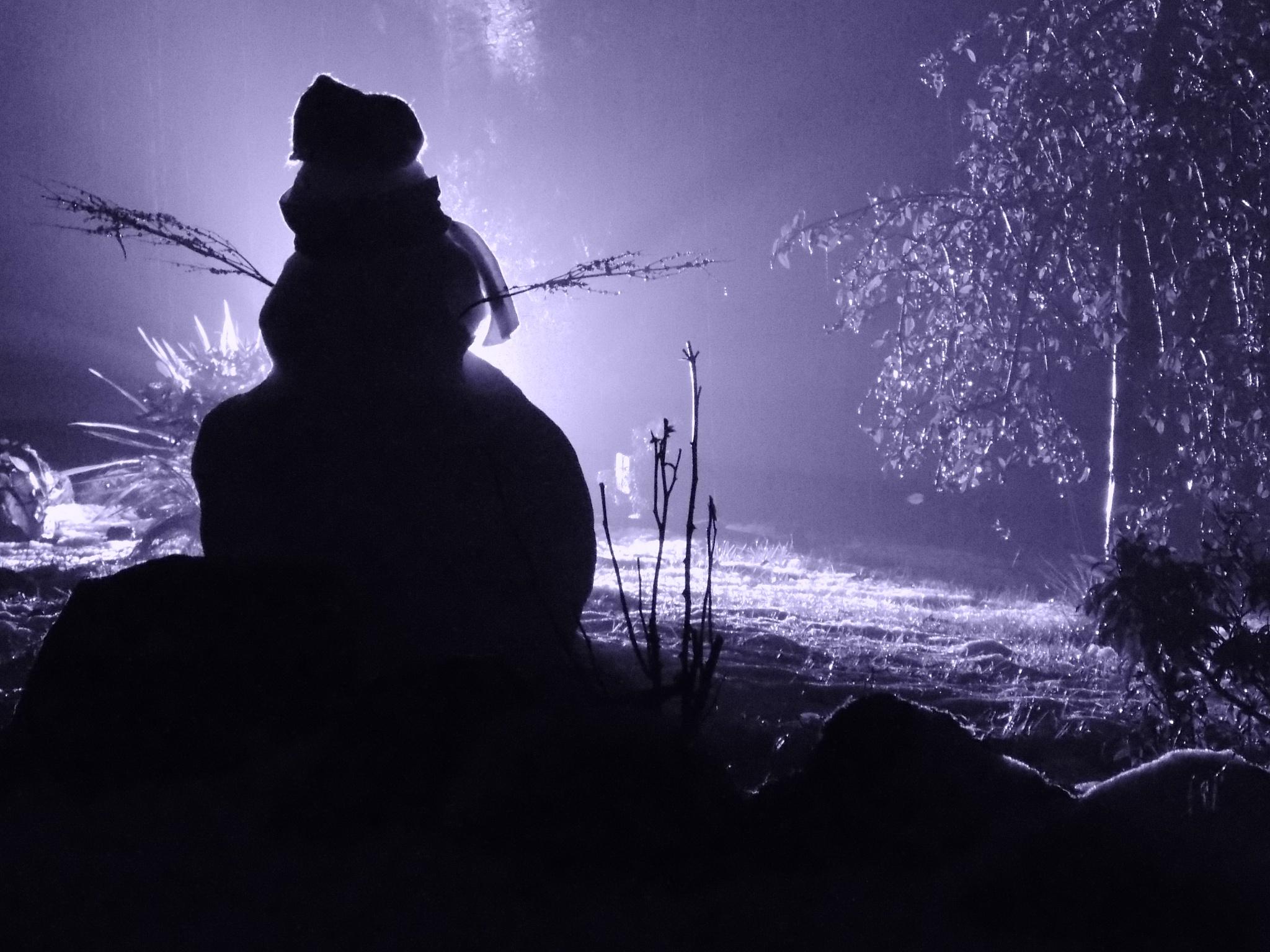 The Snowman by Denis_Bond
