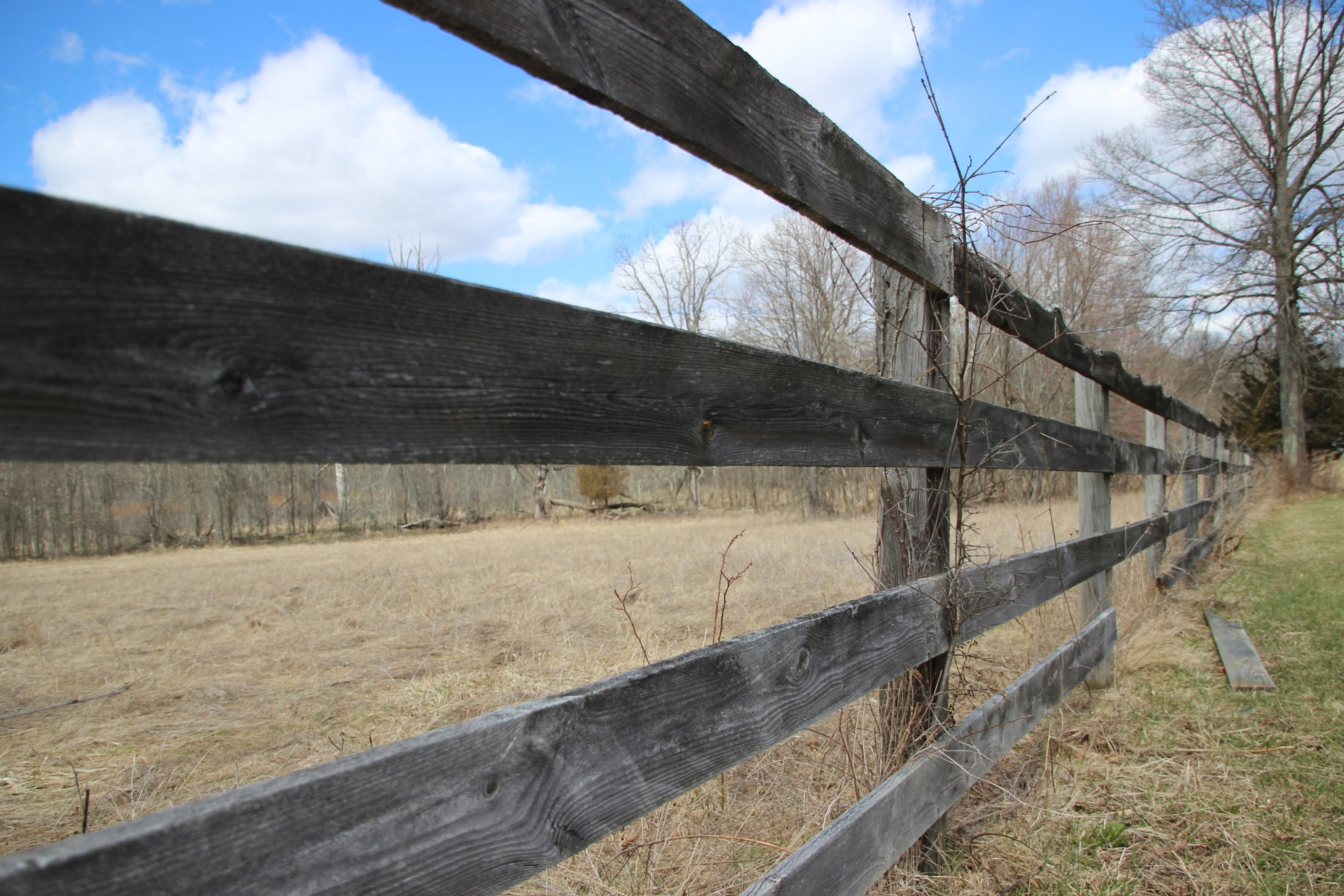 Old fence by Janet519