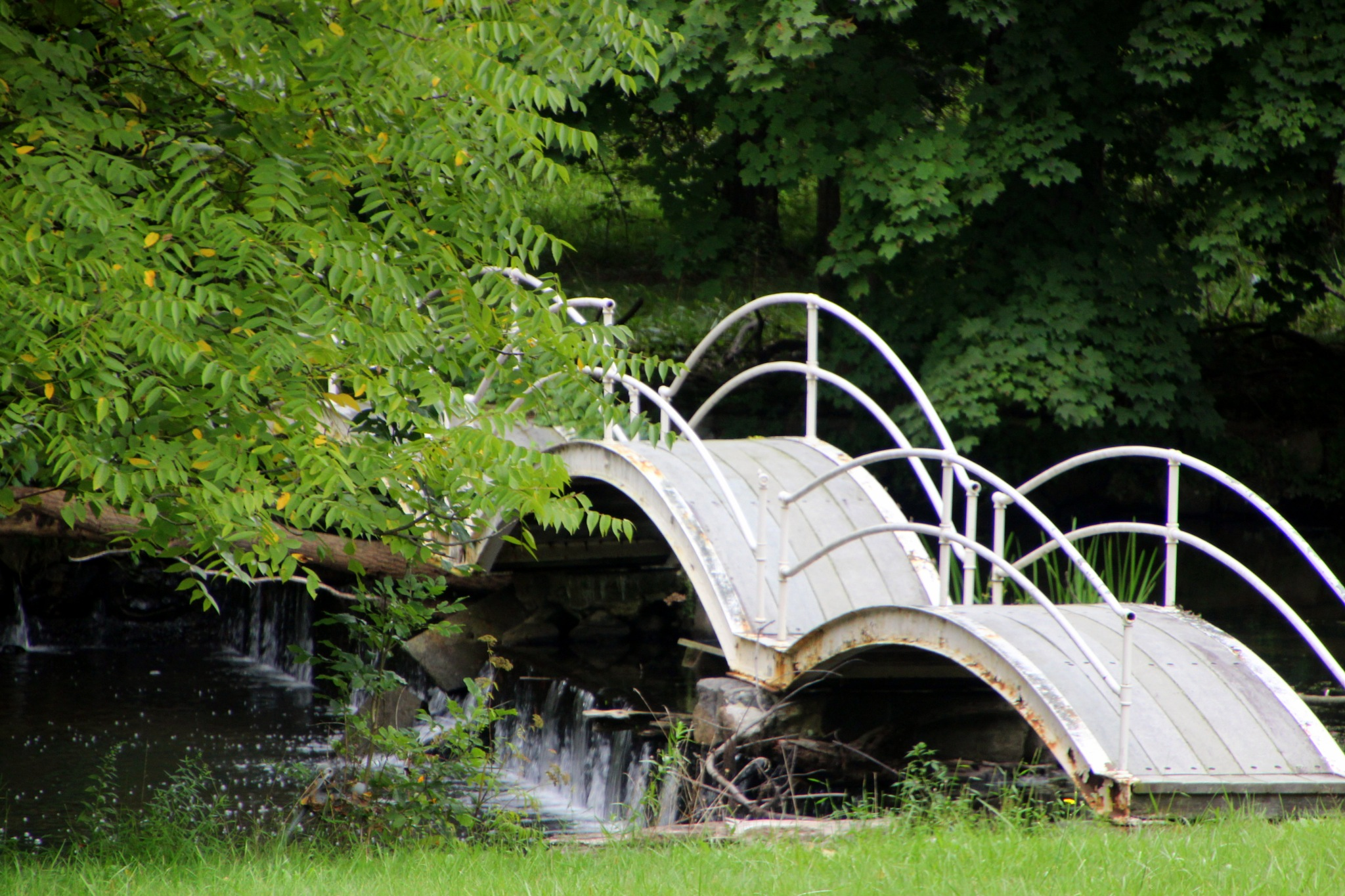 Bridge over a stream by Janet519