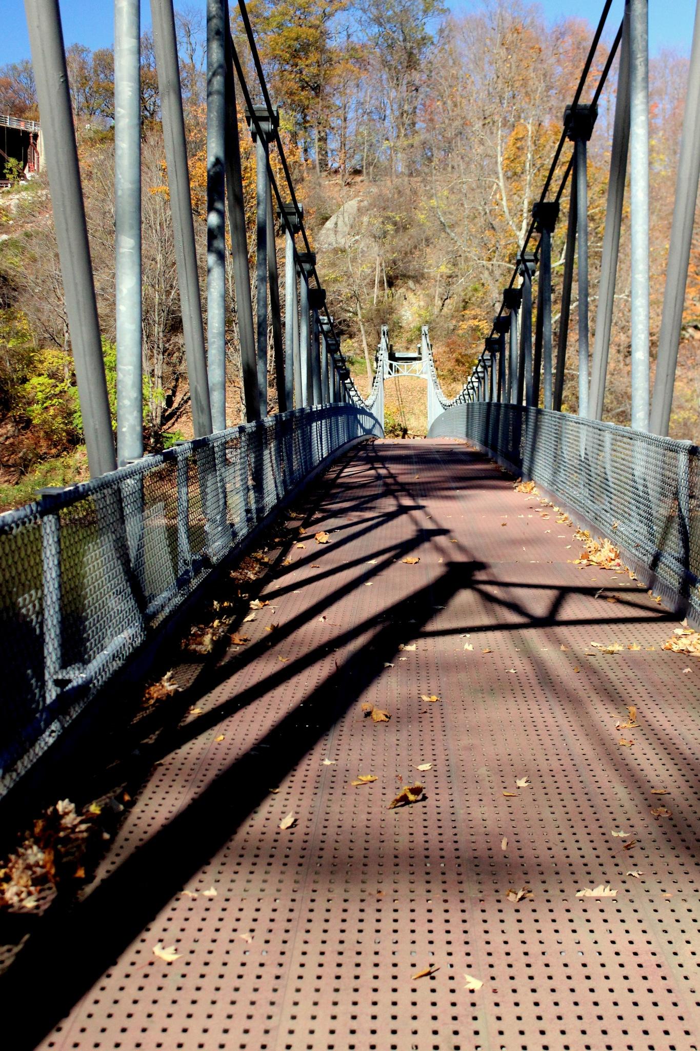 Foot bridge by Janet519