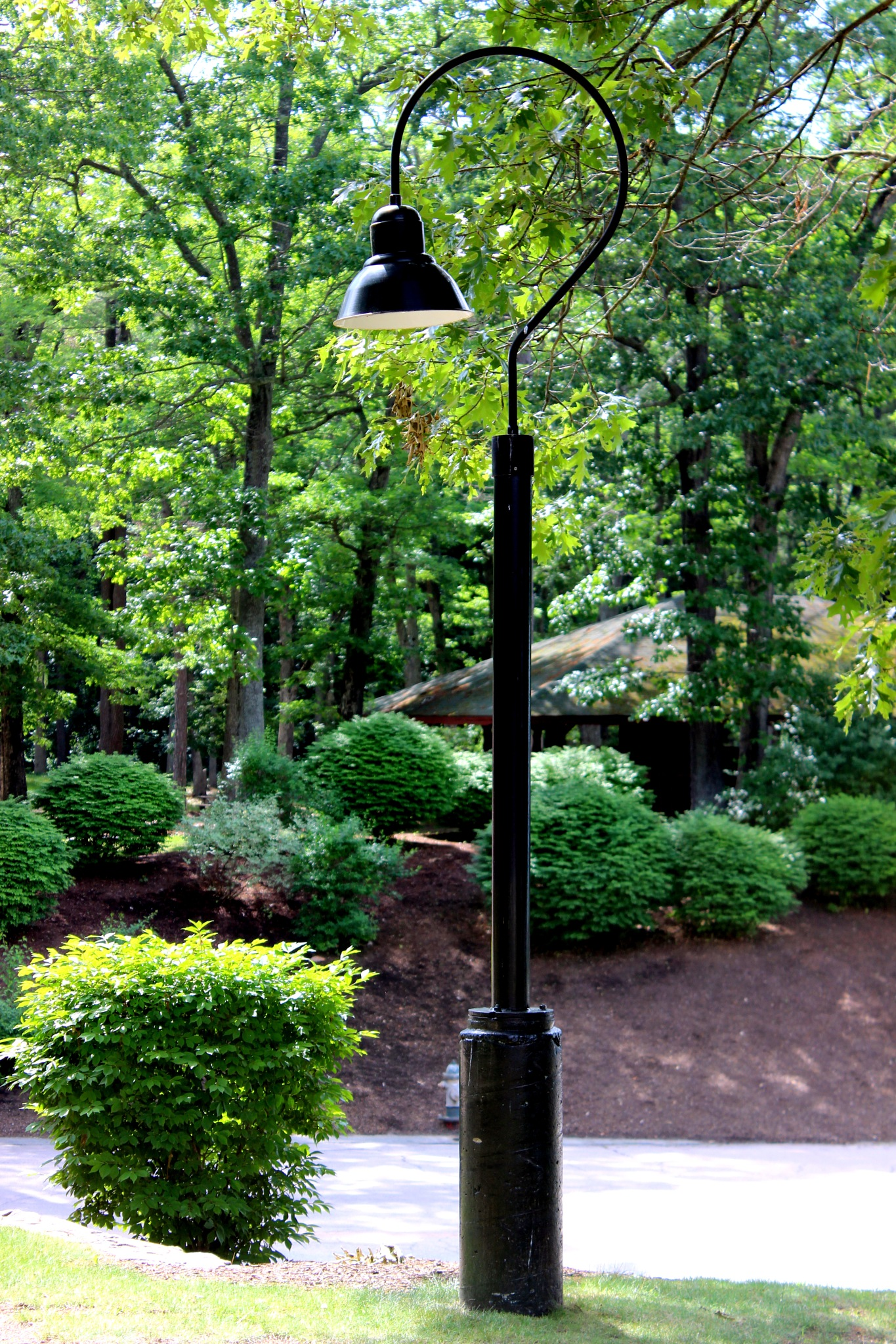 Street lamp by Janet519