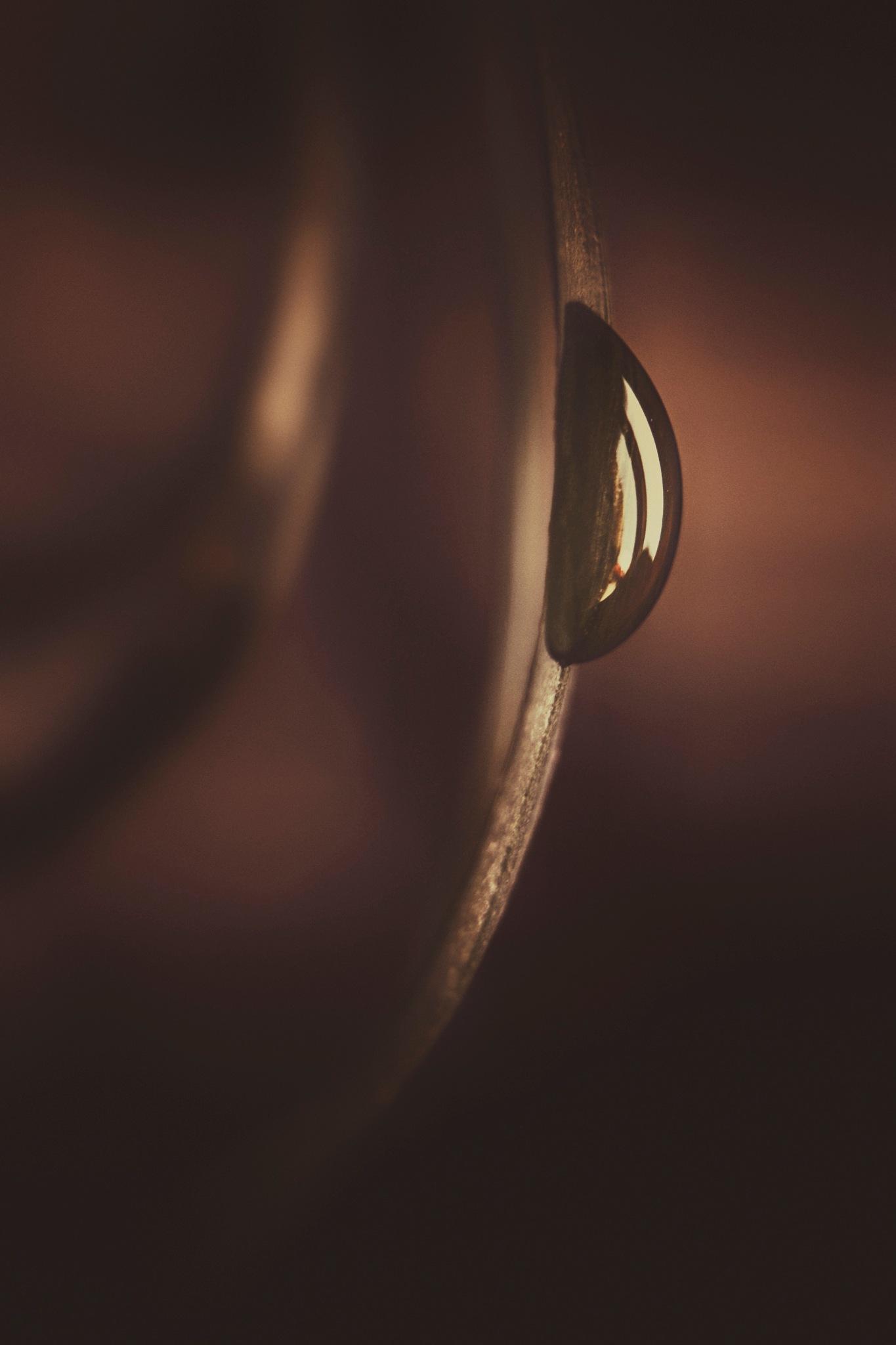 A tear  by Zeeshan Ashraf