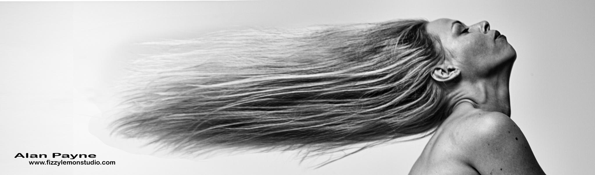 In the wind by alanpayne_fizzylemonstudio