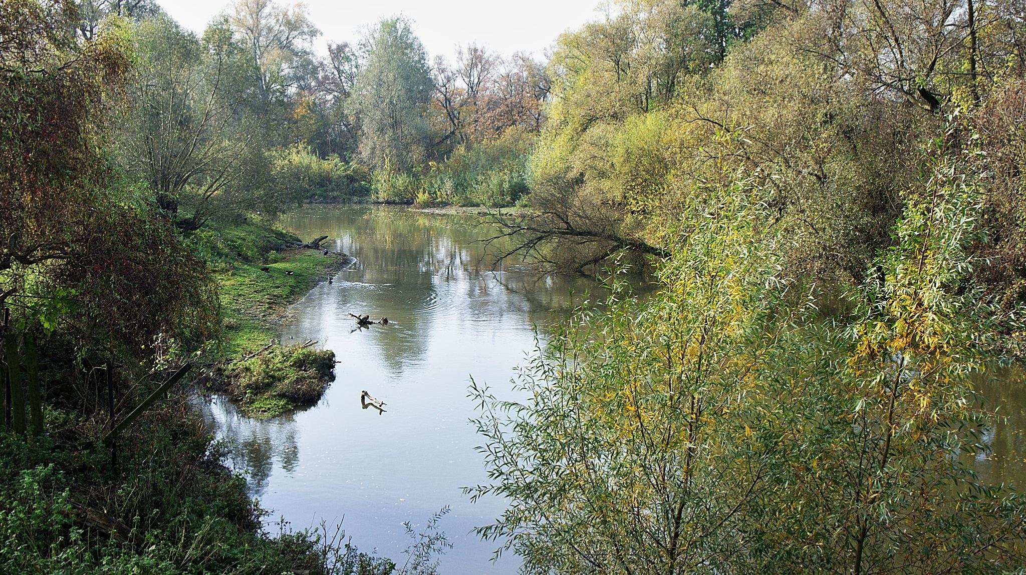 Odra river by kleckaj6