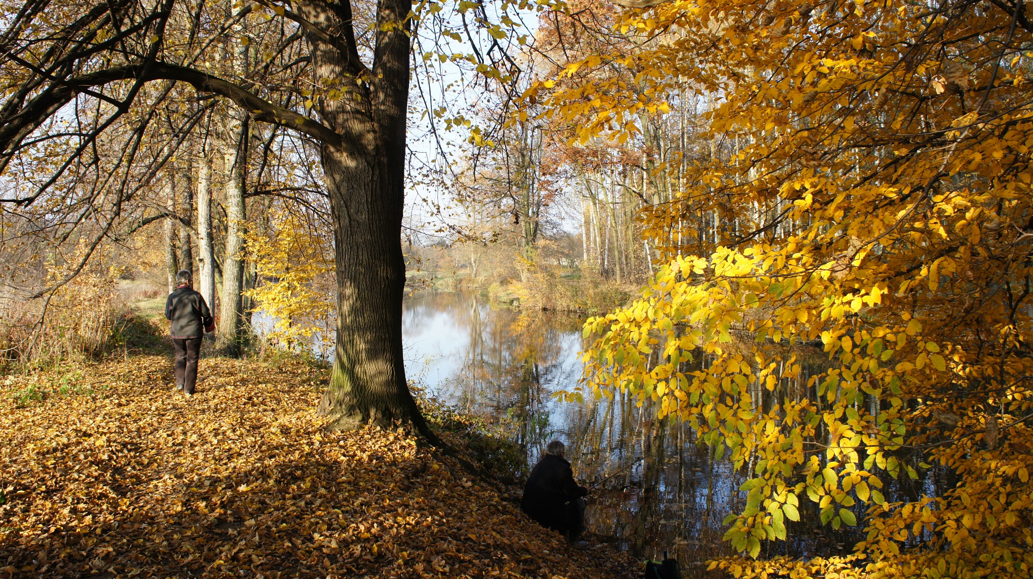 Autumn colors by kleckaj6